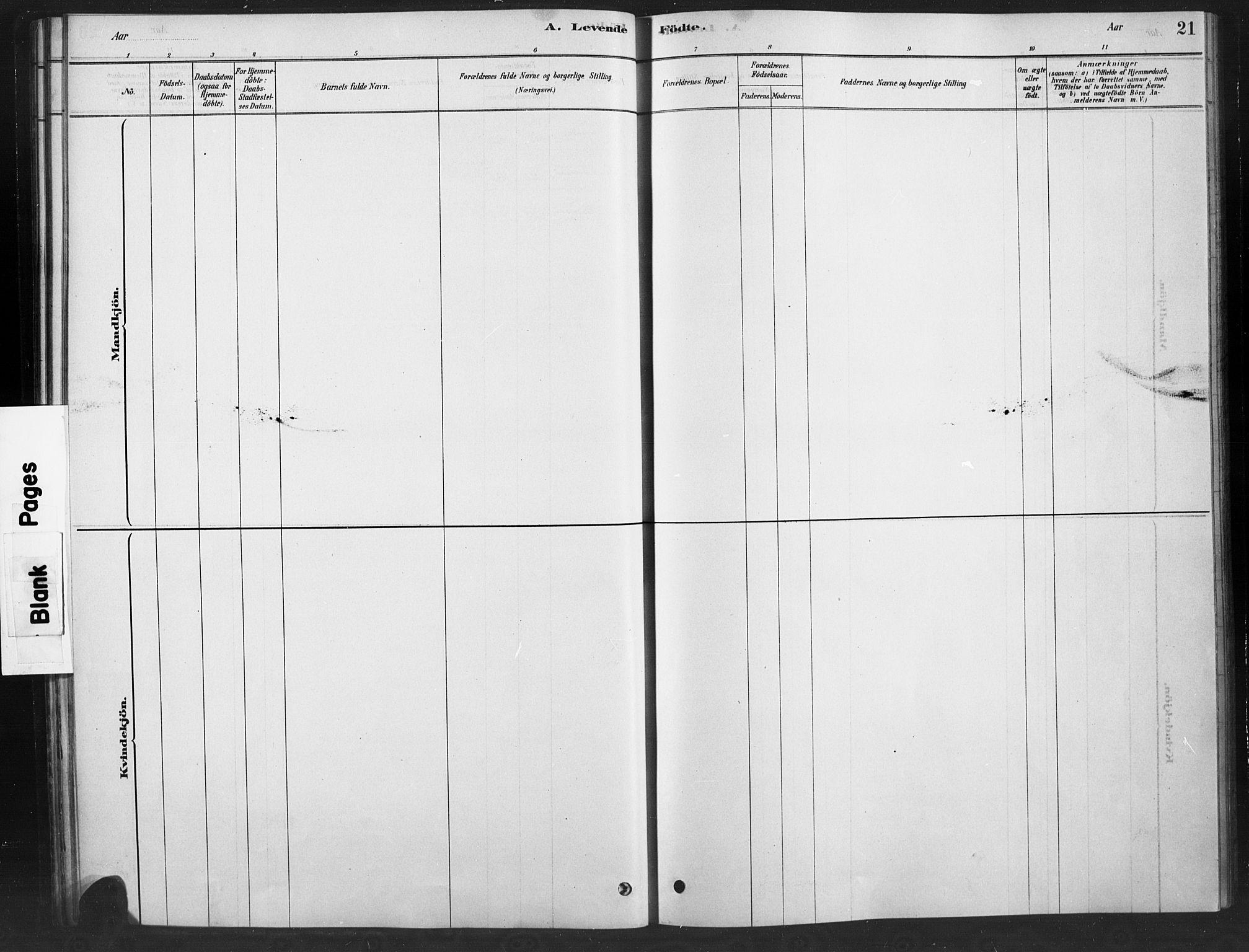 SAH, Ringebu prestekontor, Ministerialbok nr. 10, 1878-1898, s. 21