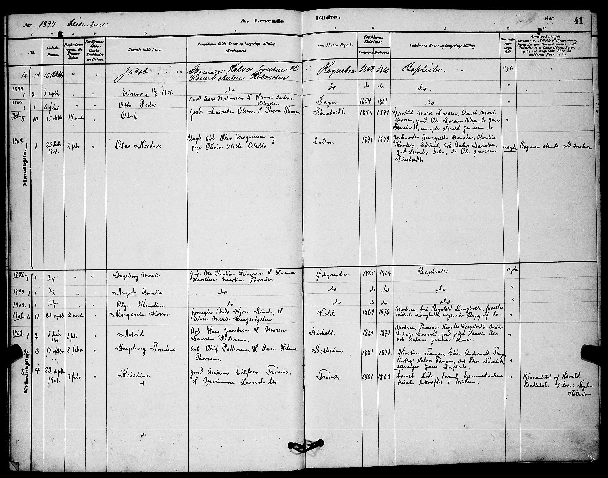 SAKO, Solum kirkebøker, G/Gc/L0001: Klokkerbok nr. III 1, 1880-1902, s. 41