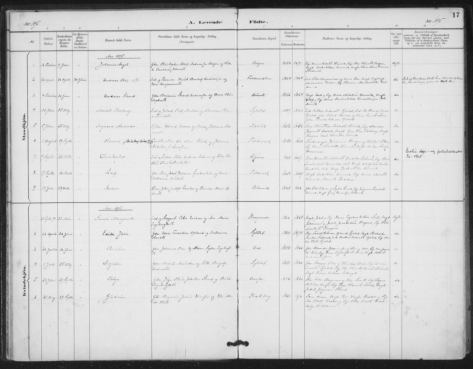 SAT, Ministerialprotokoller, klokkerbøker og fødselsregistre - Nord-Trøndelag, 783/L0660: Ministerialbok nr. 783A02, 1886-1918, s. 17
