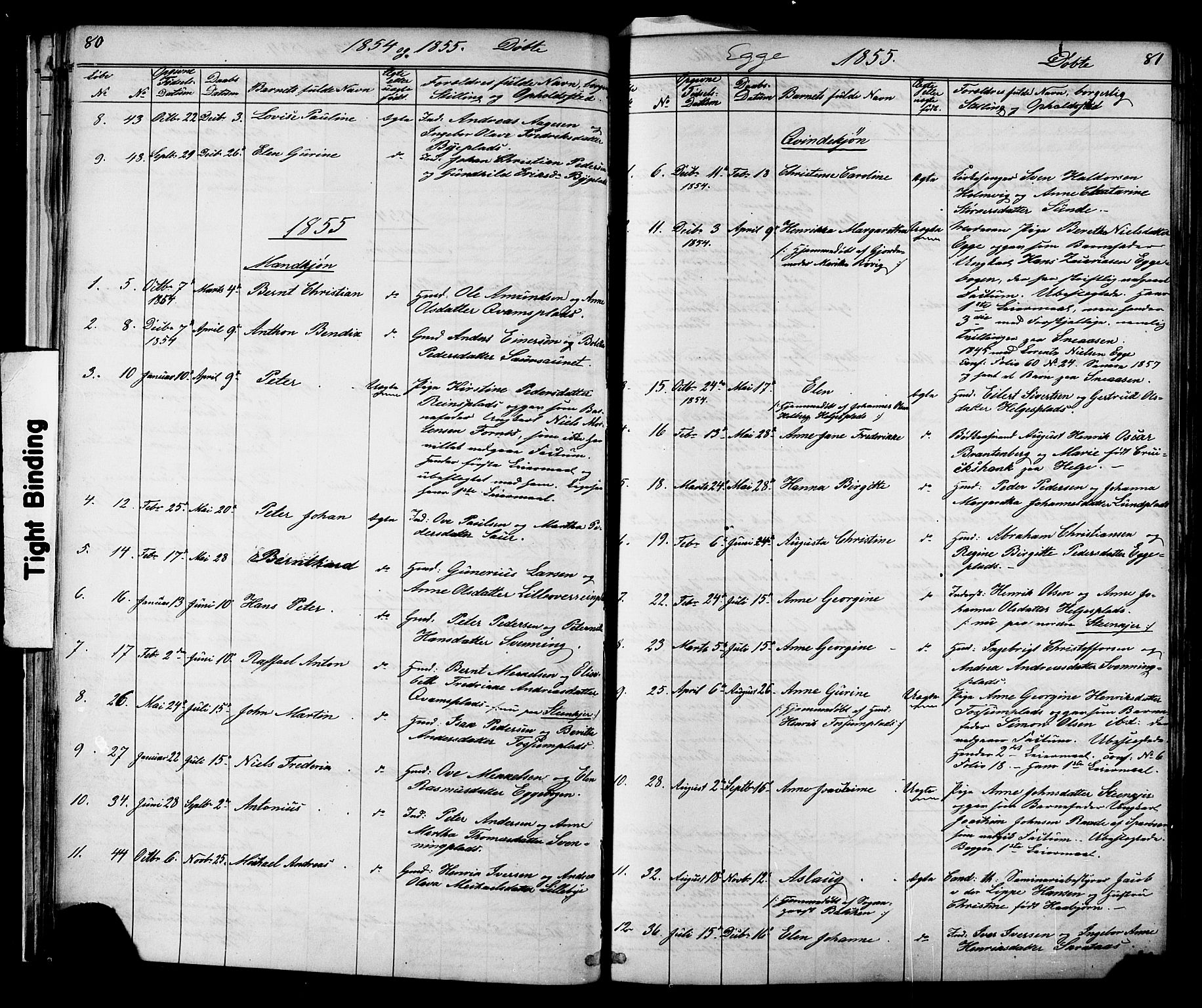 SAT, Ministerialprotokoller, klokkerbøker og fødselsregistre - Nord-Trøndelag, 739/L0367: Ministerialbok nr. 739A01 /3, 1838-1868, s. 80-81