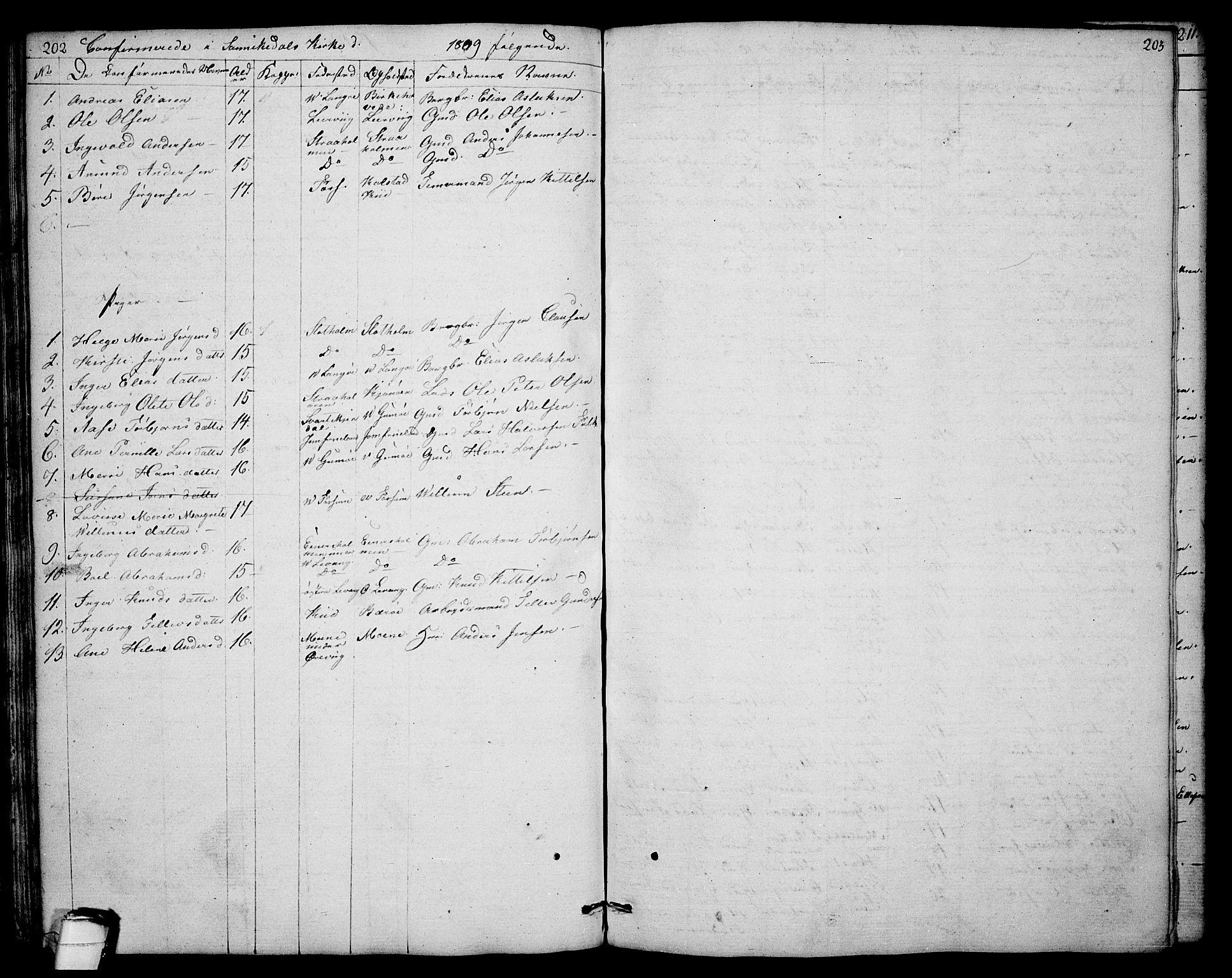 SAKO, Sannidal kirkebøker, F/Fa/L0003: Ministerialbok nr. 3, 1803-1813, s. 202-203