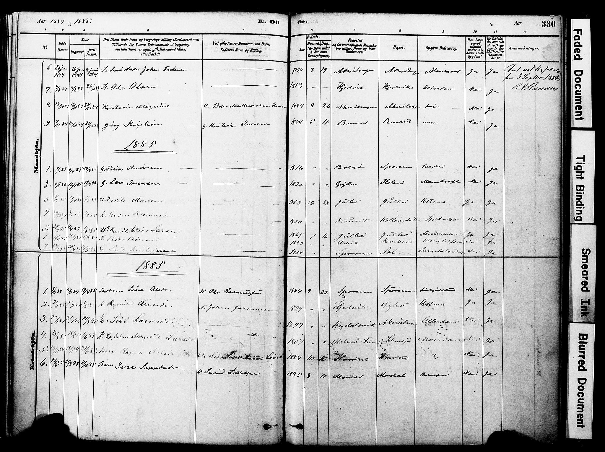 SAT, Ministerialprotokoller, klokkerbøker og fødselsregistre - Møre og Romsdal, 560/L0721: Ministerialbok nr. 560A05, 1878-1917, s. 336