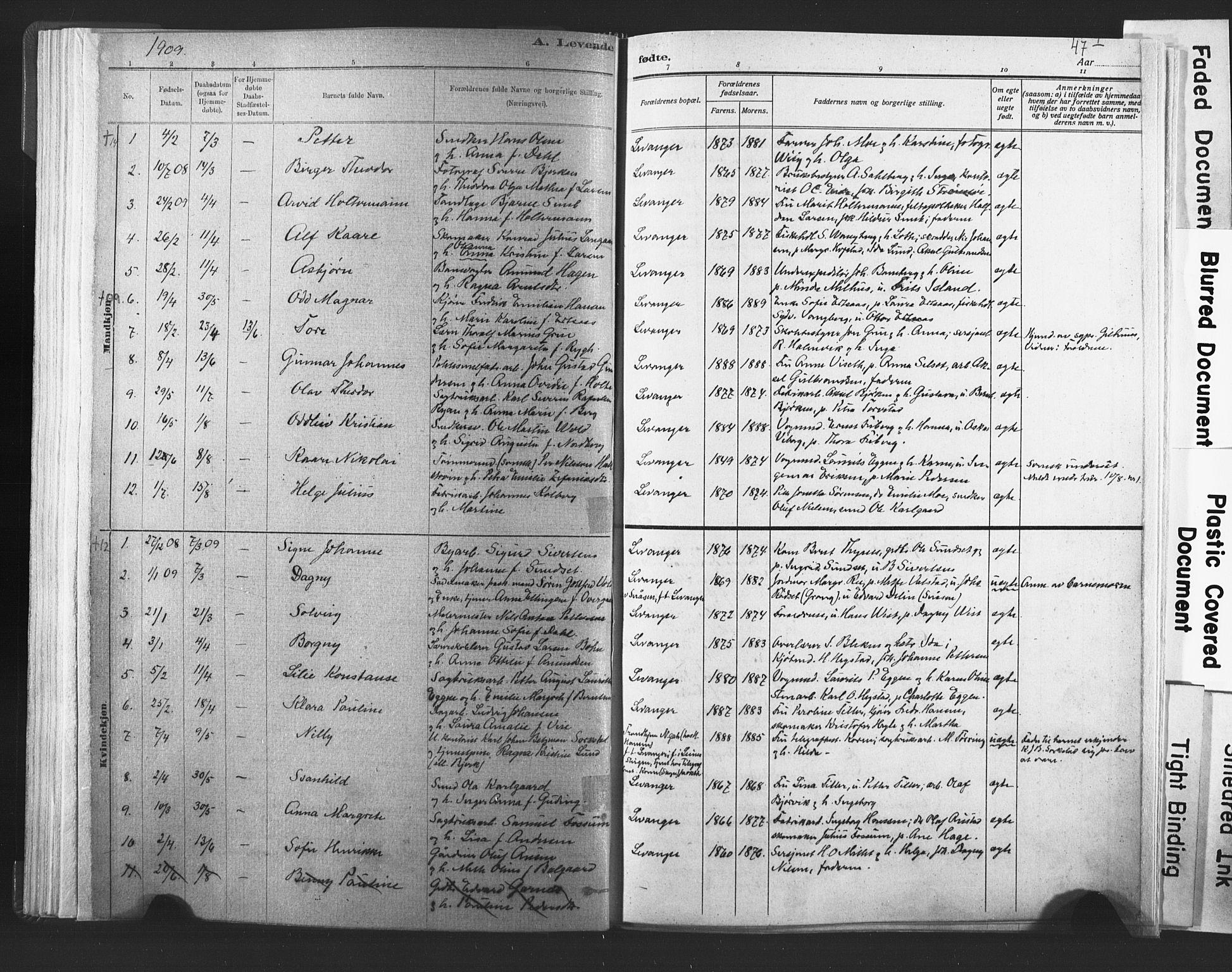 SAT, Ministerialprotokoller, klokkerbøker og fødselsregistre - Nord-Trøndelag, 720/L0189: Ministerialbok nr. 720A05, 1880-1911, s. 47