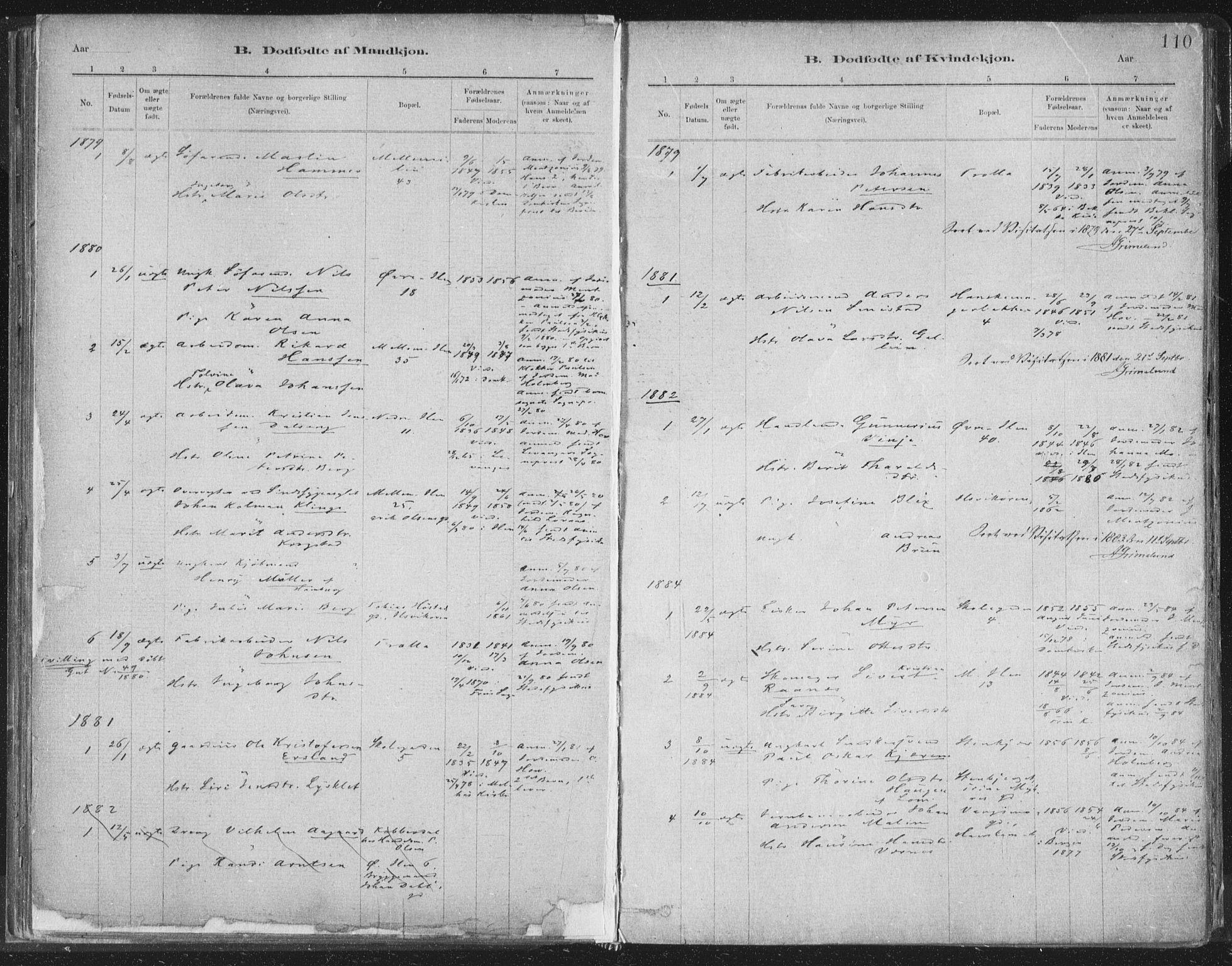 SAT, Ministerialprotokoller, klokkerbøker og fødselsregistre - Sør-Trøndelag, 603/L0162: Ministerialbok nr. 603A01, 1879-1895, s. 110