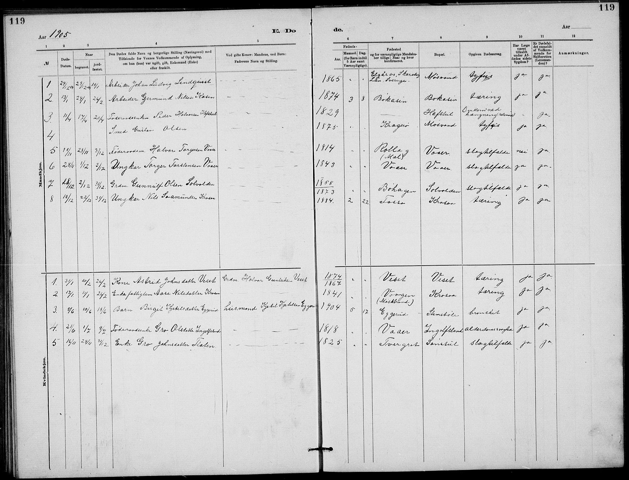 SAKO, Rjukan kirkebøker, G/Ga/L0001: Klokkerbok nr. 1, 1880-1914, s. 119