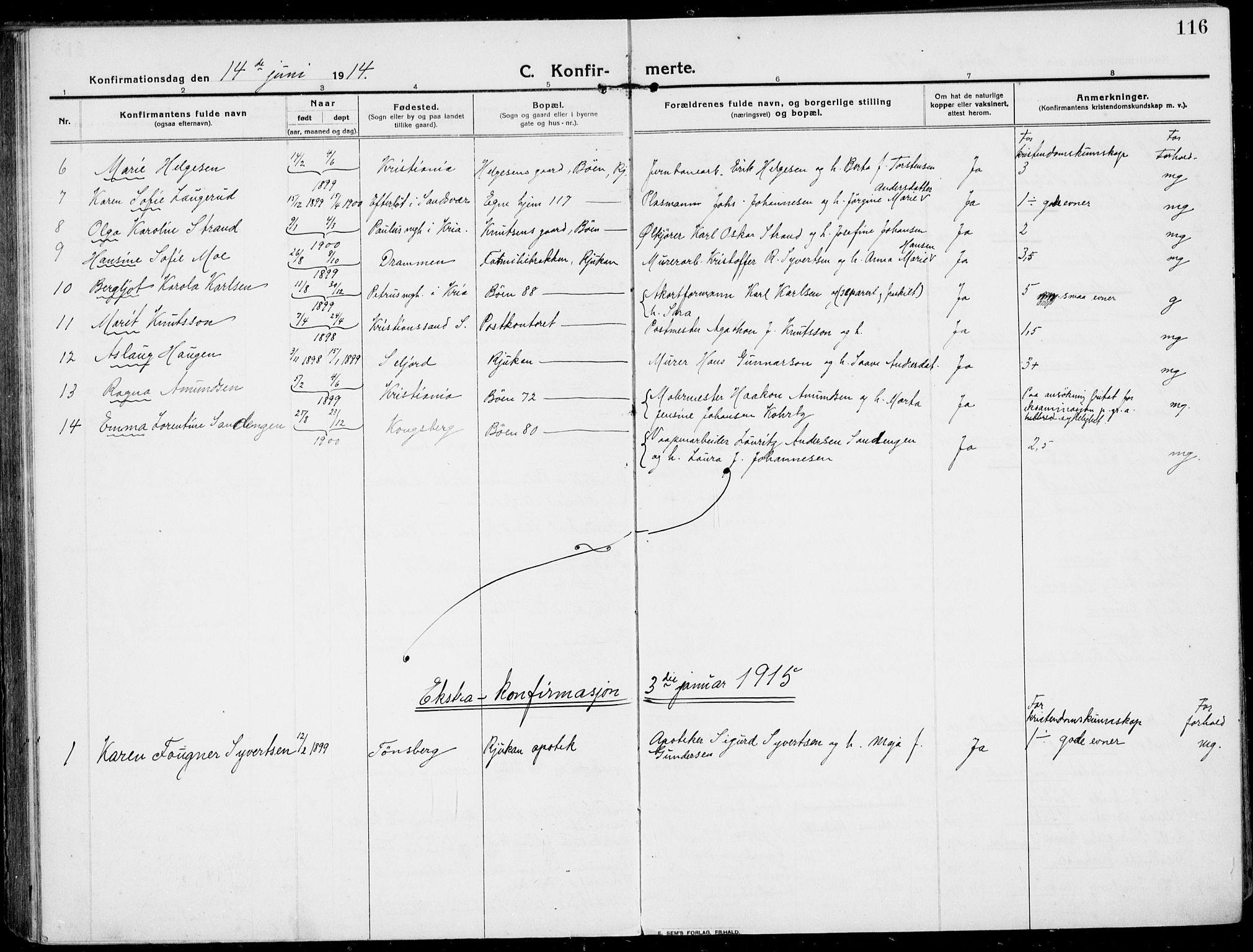 SAKO, Rjukan kirkebøker, F/Fa/L0002: Ministerialbok nr. 2, 1912-1917, s. 116