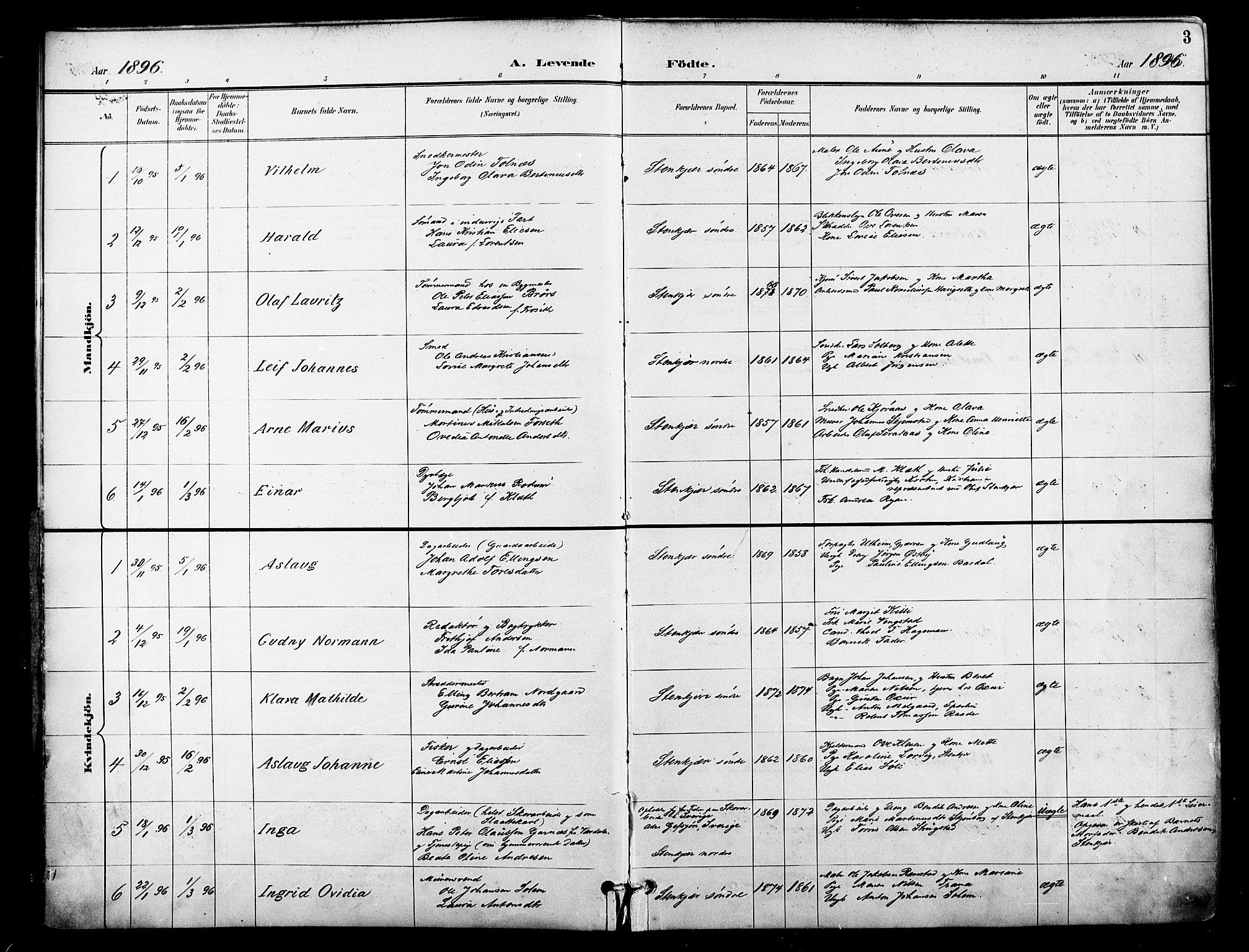 SAT, Ministerialprotokoller, klokkerbøker og fødselsregistre - Nord-Trøndelag, 739/L0372: Ministerialbok nr. 739A04, 1895-1903, s. 3