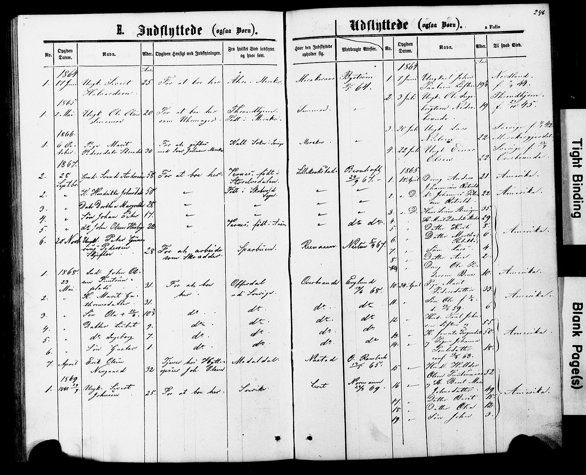 SAT, Ministerialprotokoller, klokkerbøker og fødselsregistre - Nord-Trøndelag, 706/L0049: Klokkerbok nr. 706C01, 1864-1895, s. 246