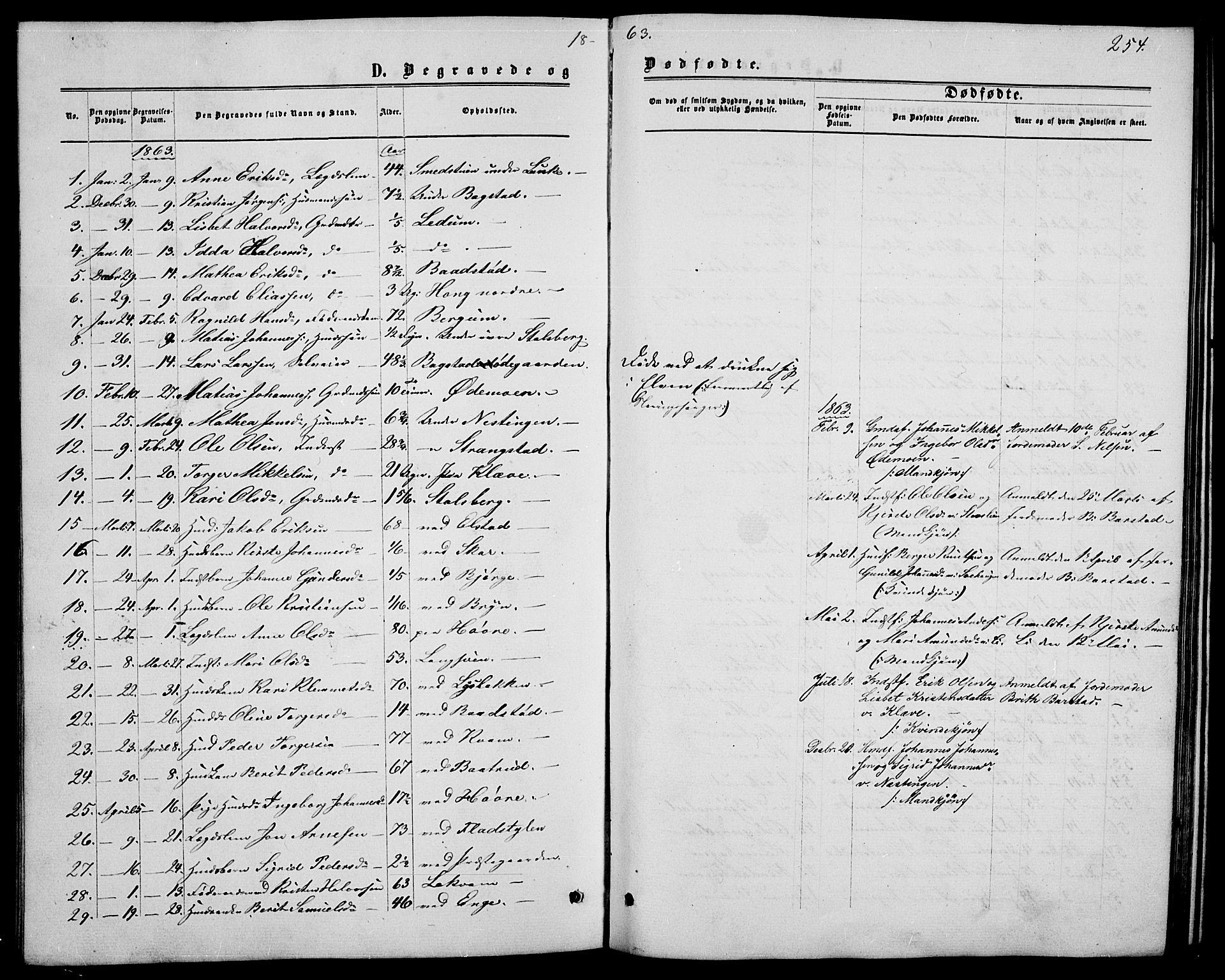 SAH, Øyer prestekontor, Klokkerbok nr. 1, 1863-1877, s. 254