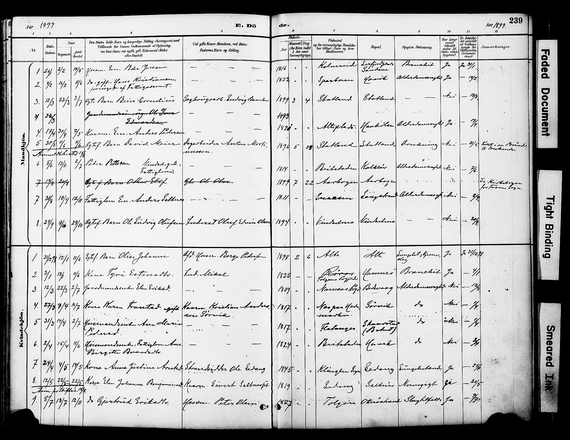 SAT, Ministerialprotokoller, klokkerbøker og fødselsregistre - Nord-Trøndelag, 774/L0628: Ministerialbok nr. 774A02, 1887-1903, s. 239