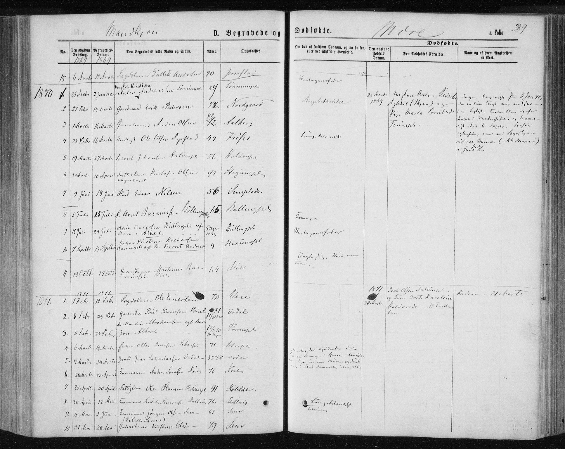 SAT, Ministerialprotokoller, klokkerbøker og fødselsregistre - Nord-Trøndelag, 735/L0345: Ministerialbok nr. 735A08 /1, 1863-1872, s. 289