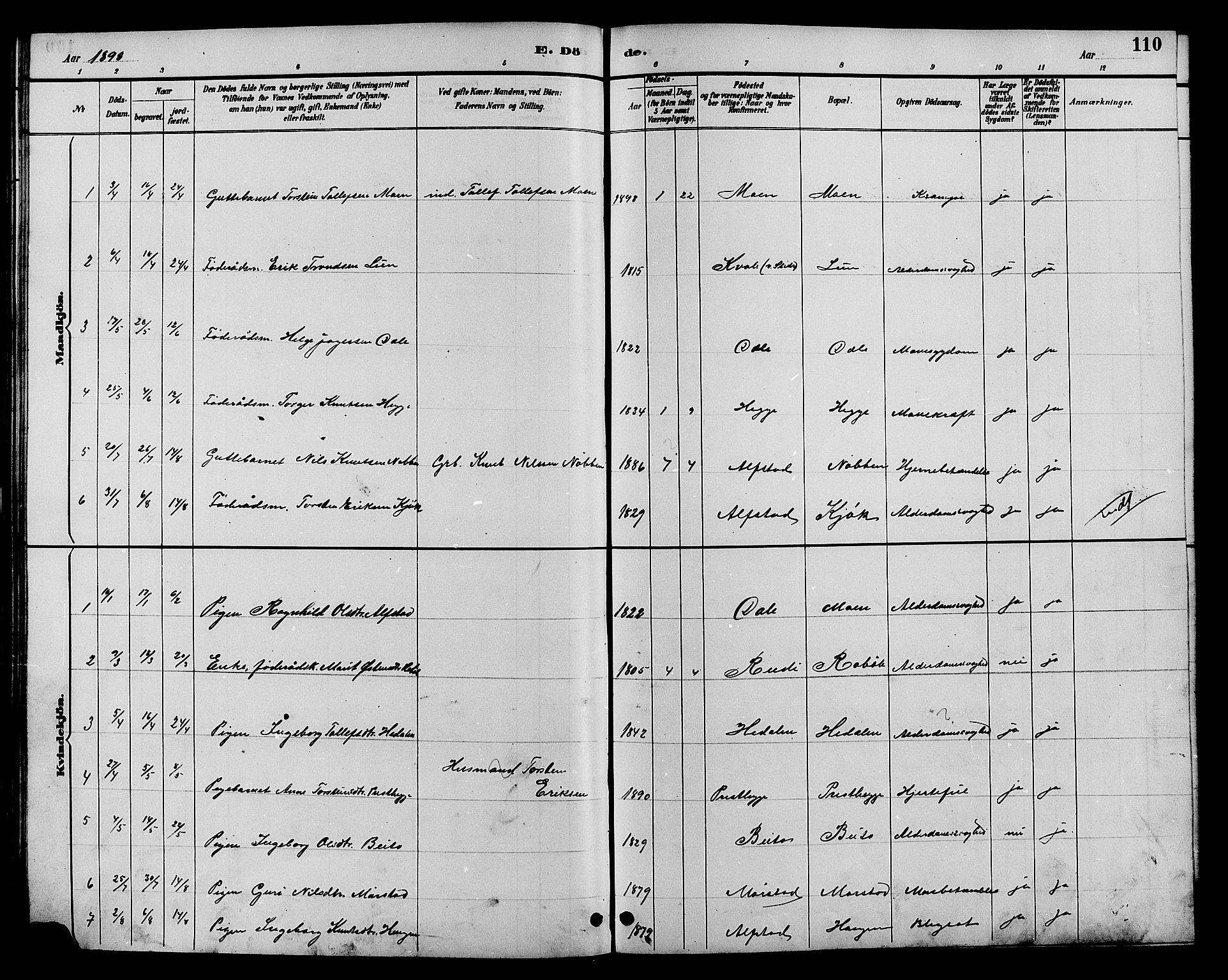 SAH, Øystre Slidre prestekontor, Klokkerbok nr. 4, 1887-1907, s. 110