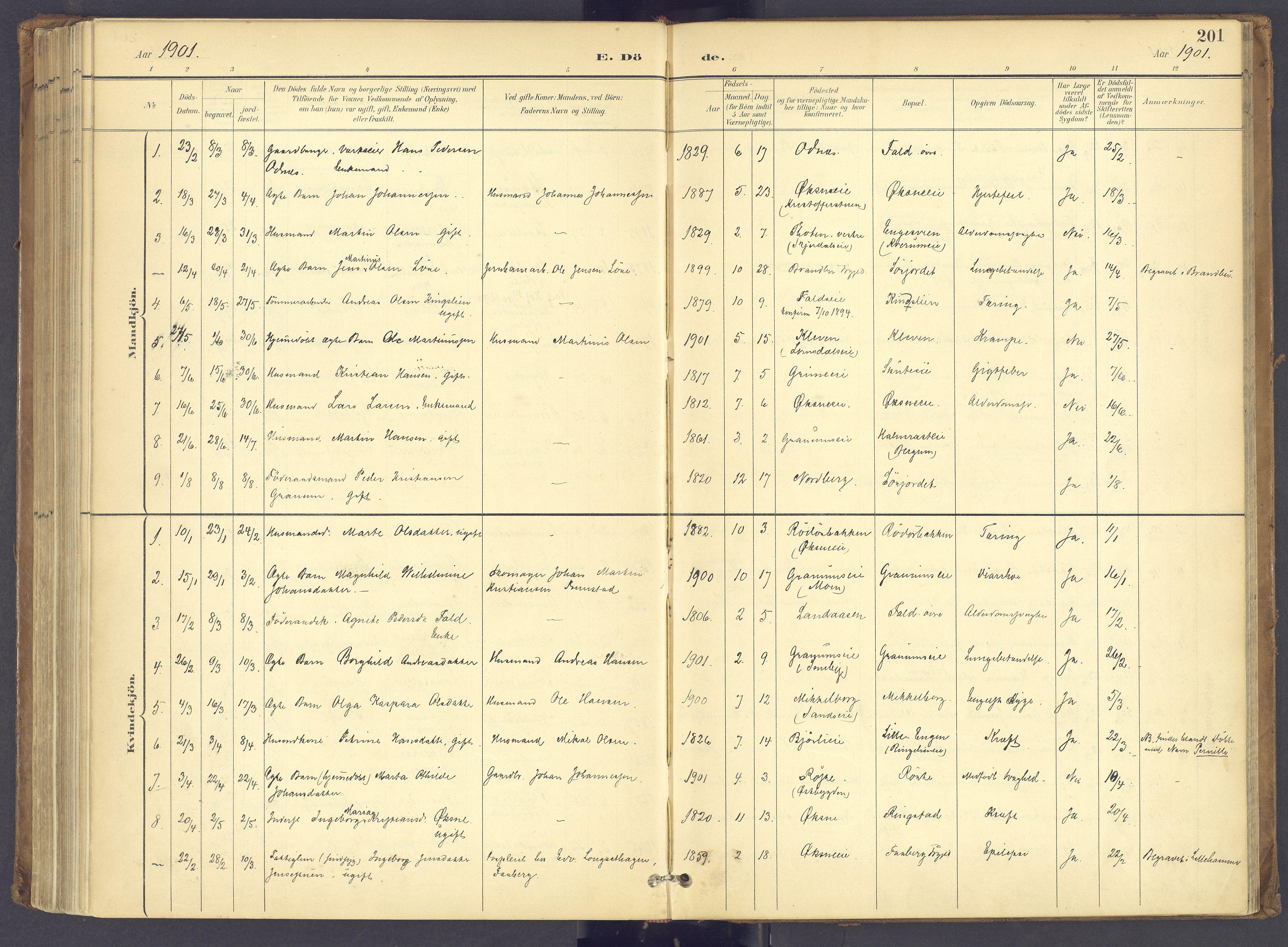 SAH, Søndre Land prestekontor, K/L0006: Ministerialbok nr. 6, 1895-1904, s. 201