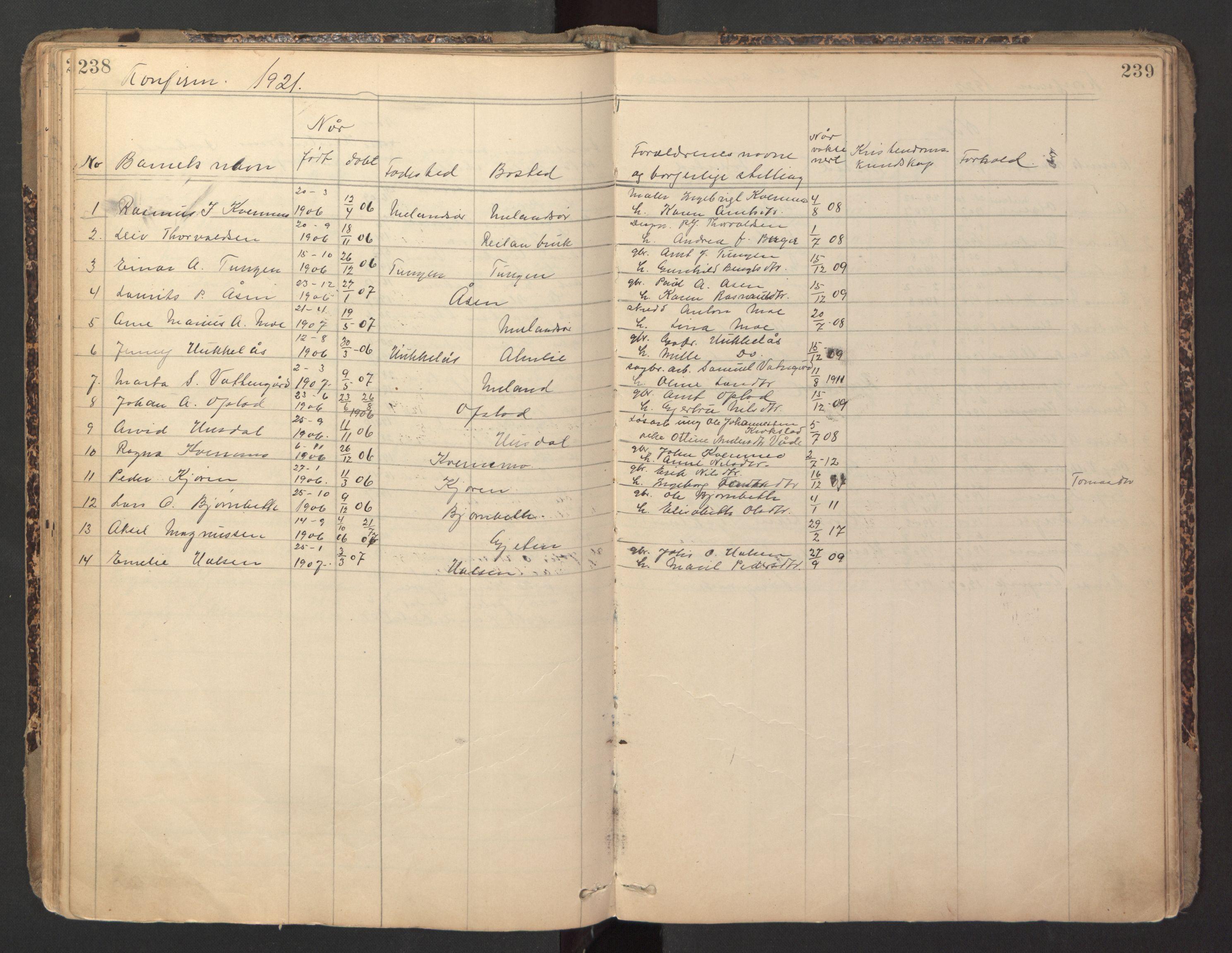 SAT, Ministerialprotokoller, klokkerbøker og fødselsregistre - Sør-Trøndelag, 670/L0837: Klokkerbok nr. 670C01, 1905-1946, s. 238-239