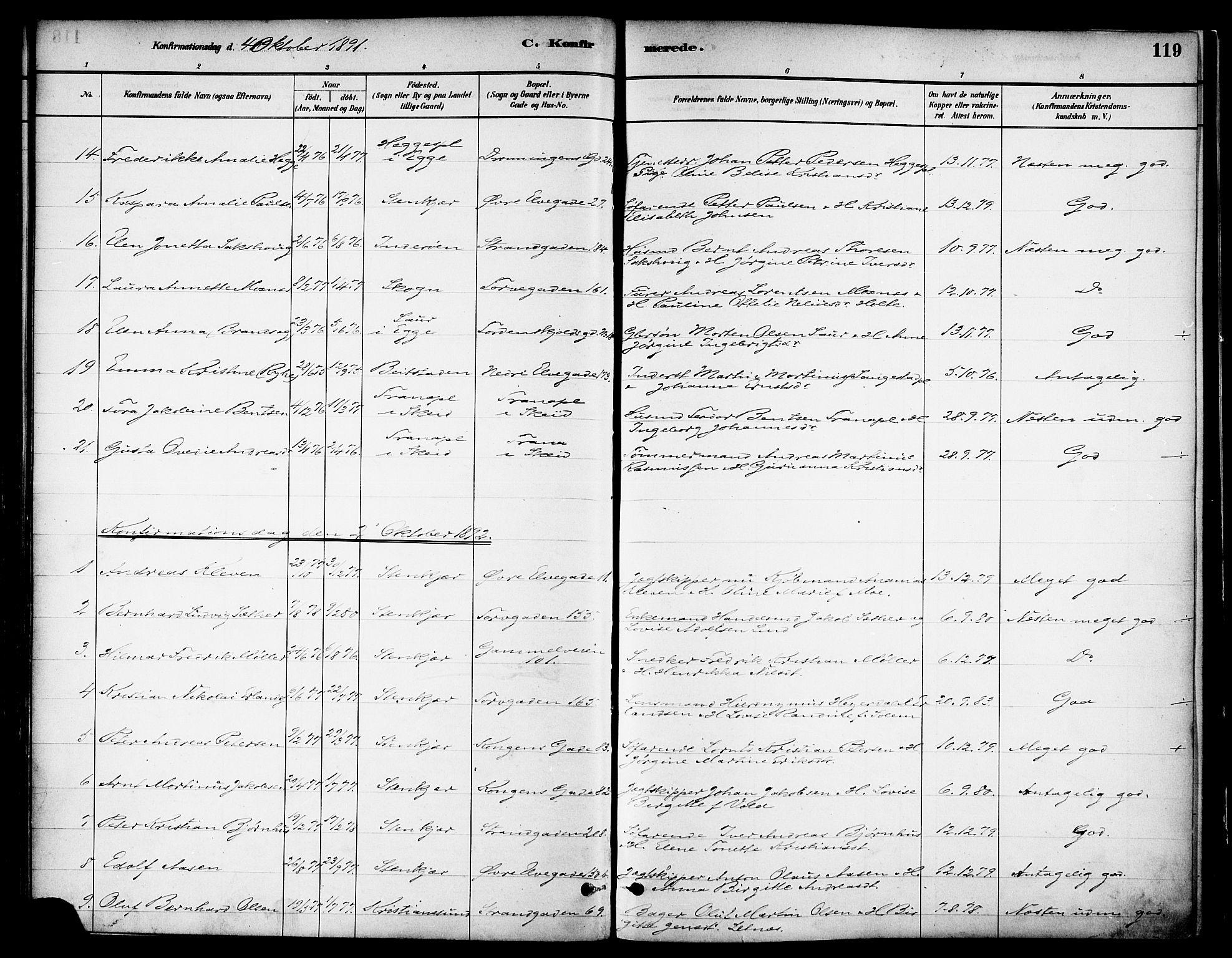 SAT, Ministerialprotokoller, klokkerbøker og fødselsregistre - Nord-Trøndelag, 739/L0371: Ministerialbok nr. 739A03, 1881-1895, s. 119