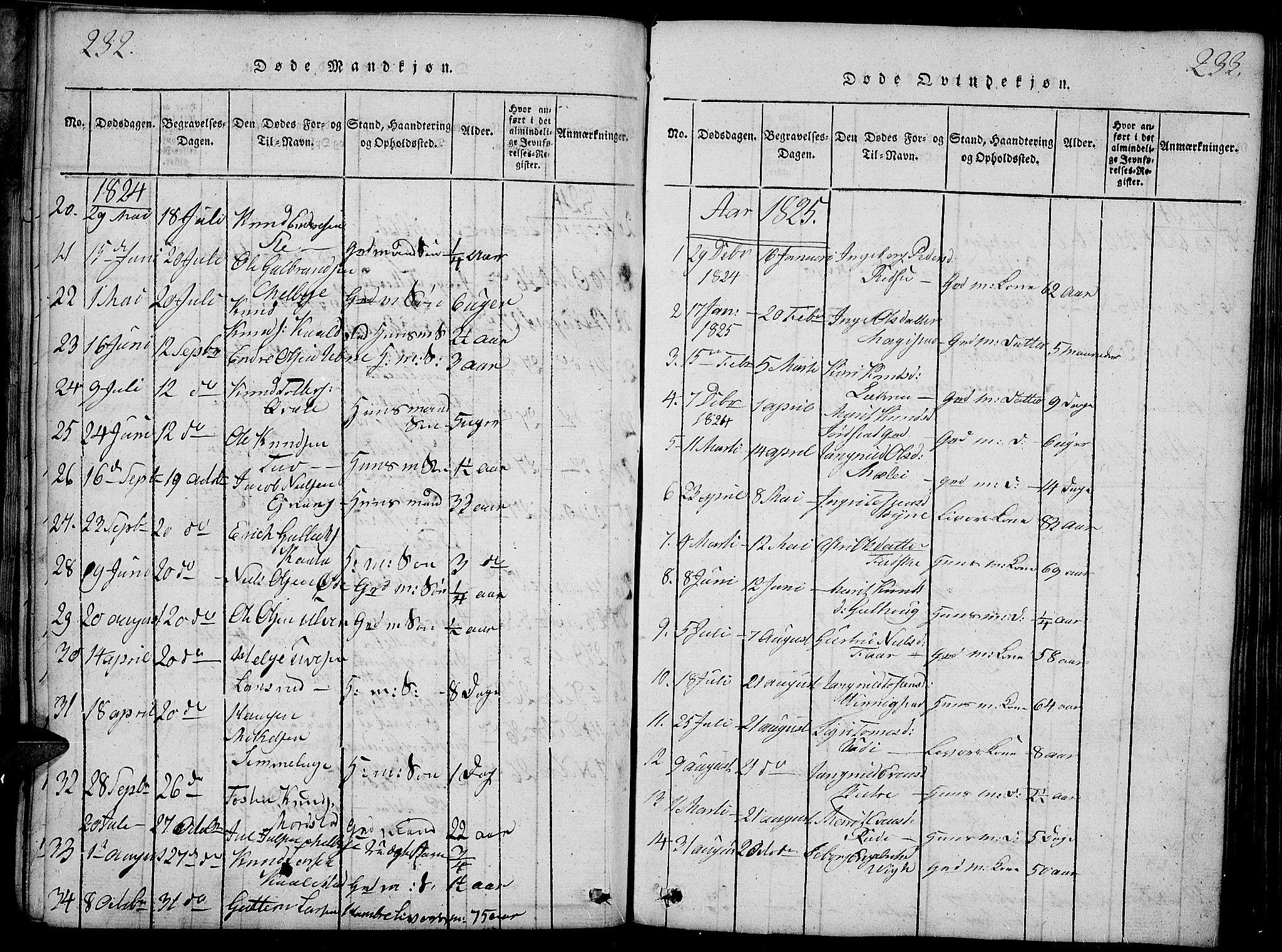 SAH, Slidre prestekontor, Ministerialbok nr. 2, 1814-1830, s. 232-233