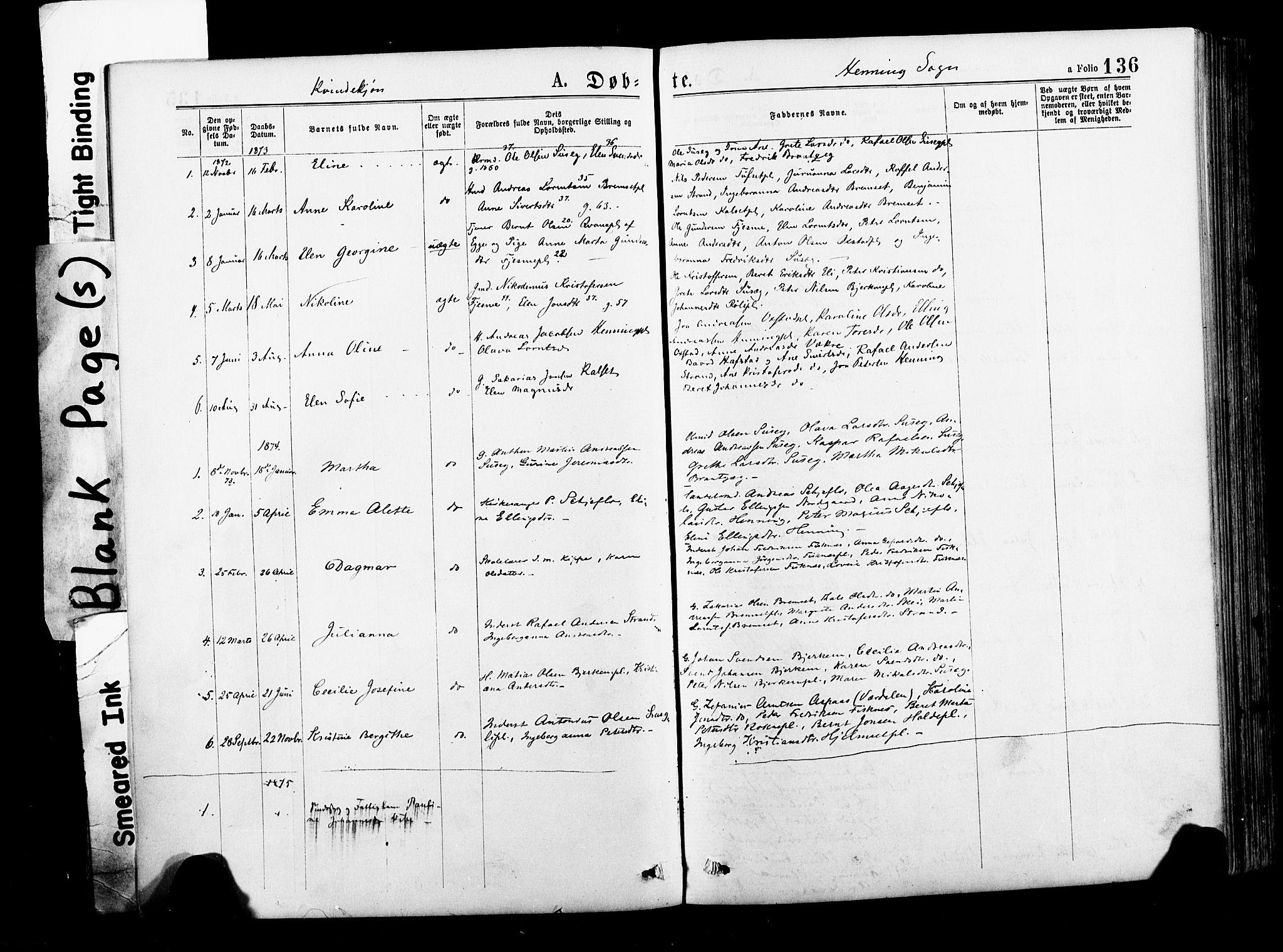 SAT, Ministerialprotokoller, klokkerbøker og fødselsregistre - Nord-Trøndelag, 735/L0348: Ministerialbok nr. 735A09 /3, 1873-1883, s. 136