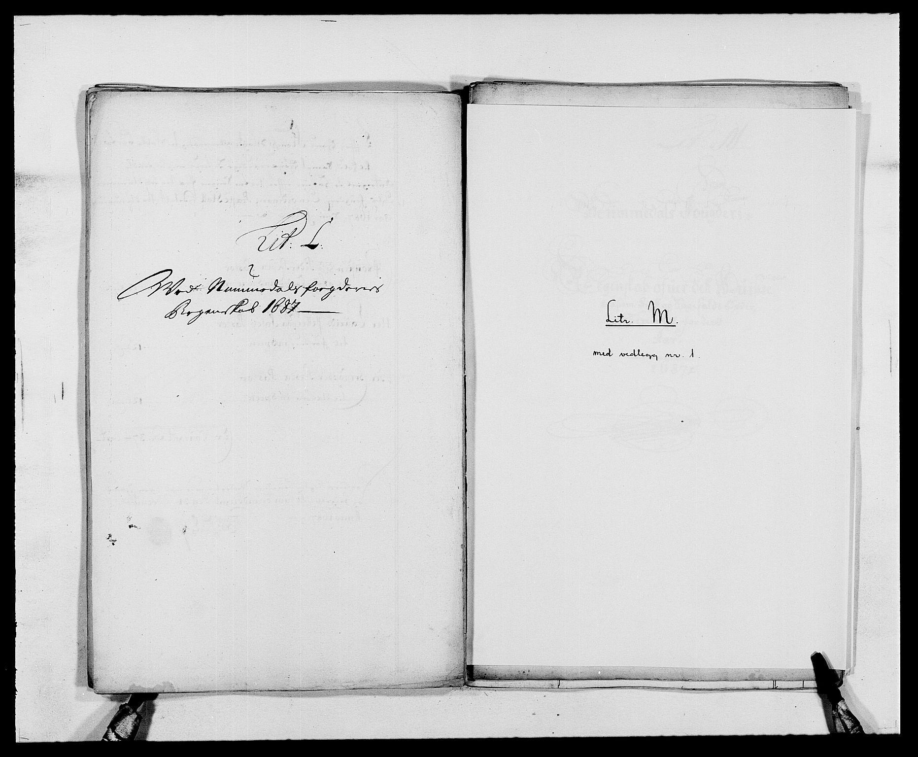 RA, Rentekammeret inntil 1814, Reviderte regnskaper, Fogderegnskap, R64/L4422: Fogderegnskap Namdal, 1687-1689, s. 65