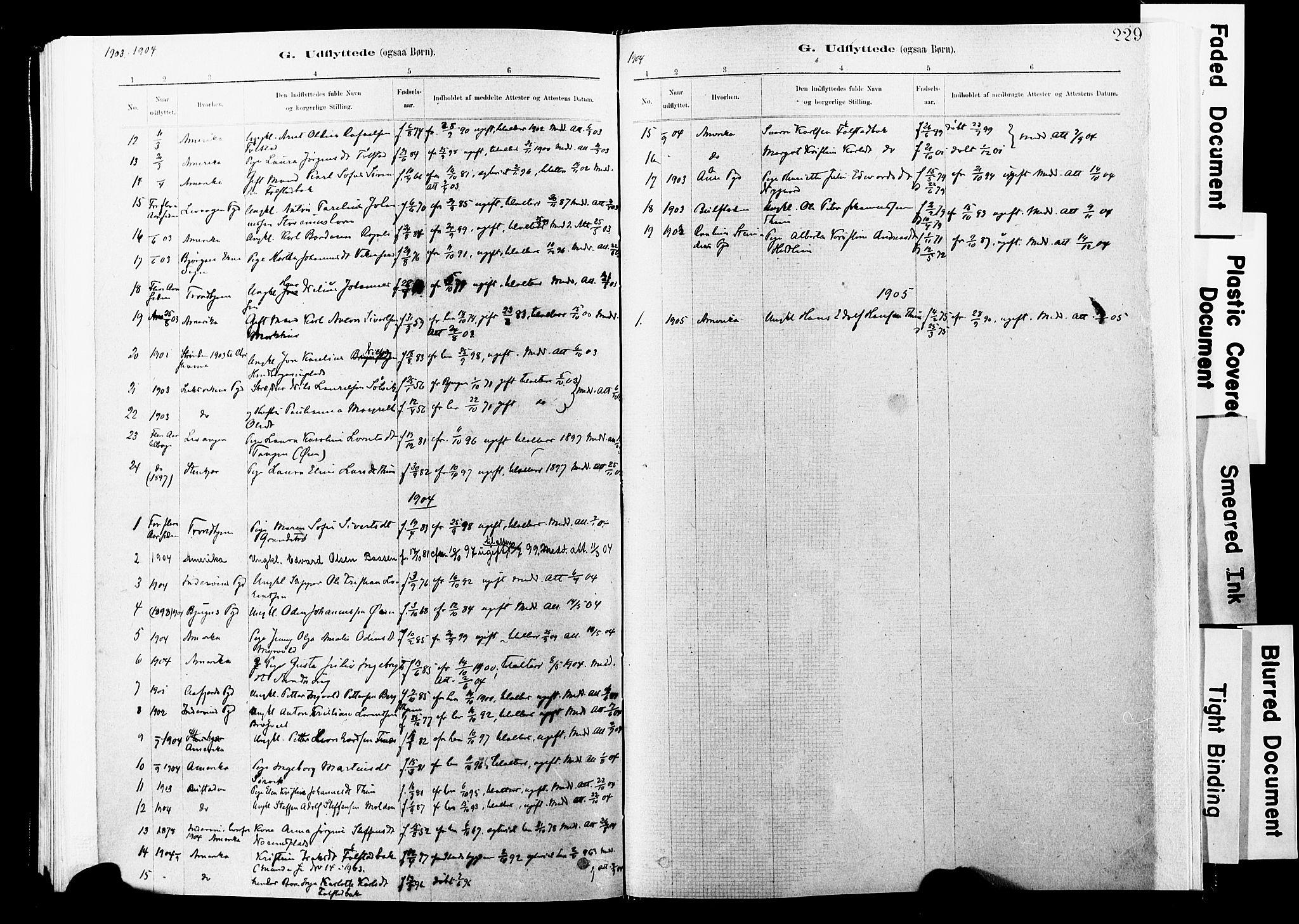 SAT, Ministerialprotokoller, klokkerbøker og fødselsregistre - Nord-Trøndelag, 744/L0420: Ministerialbok nr. 744A04, 1882-1904, s. 229