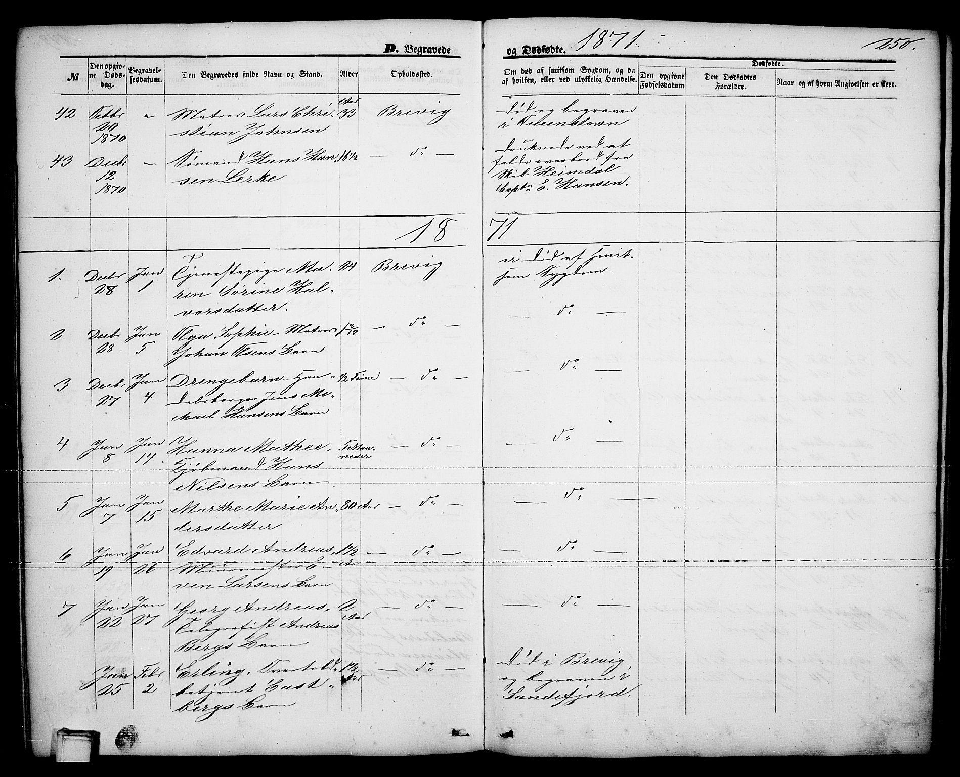 SAKO, Brevik kirkebøker, G/Ga/L0003: Klokkerbok nr. 3, 1866-1881, s. 250
