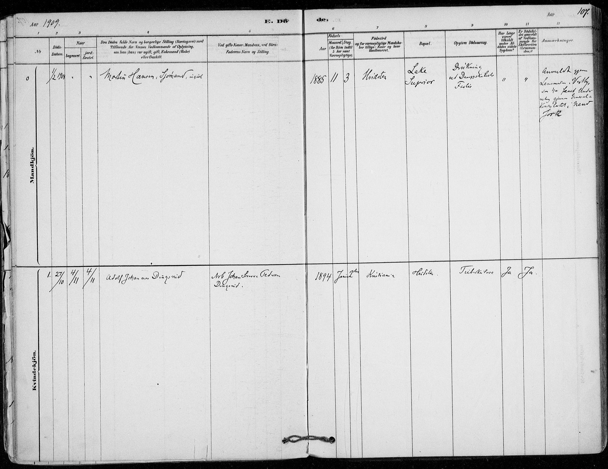 SAO, Vestby prestekontor Kirkebøker, F/Fd/L0001: Ministerialbok nr. IV 1, 1878-1945, s. 107