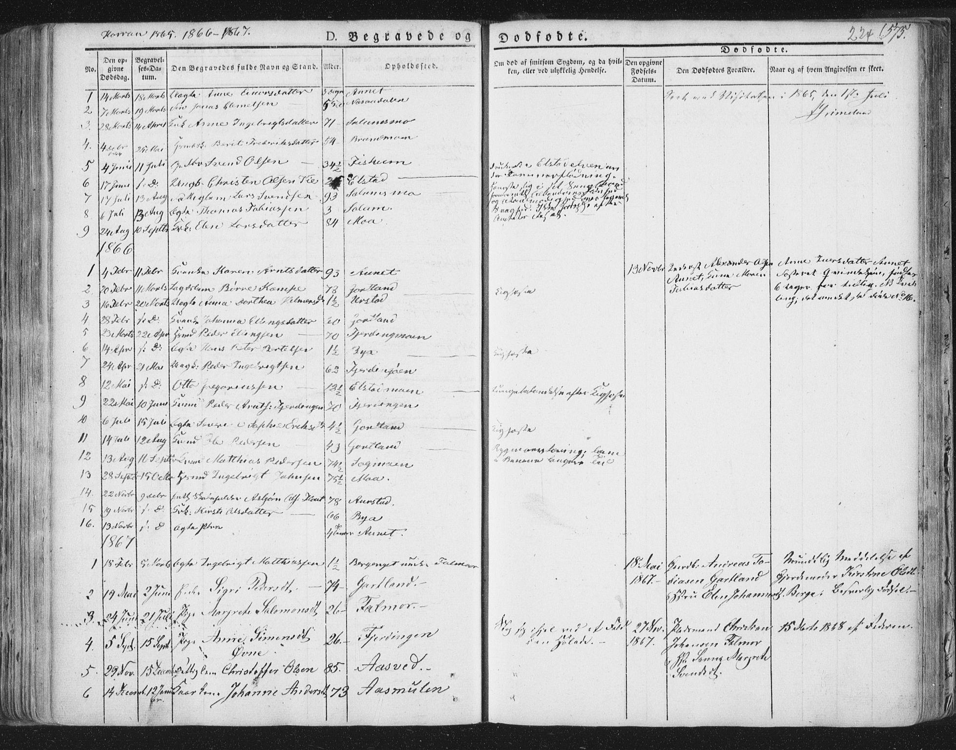 SAT, Ministerialprotokoller, klokkerbøker og fødselsregistre - Nord-Trøndelag, 758/L0513: Ministerialbok nr. 758A02 /3, 1839-1868, s. 224