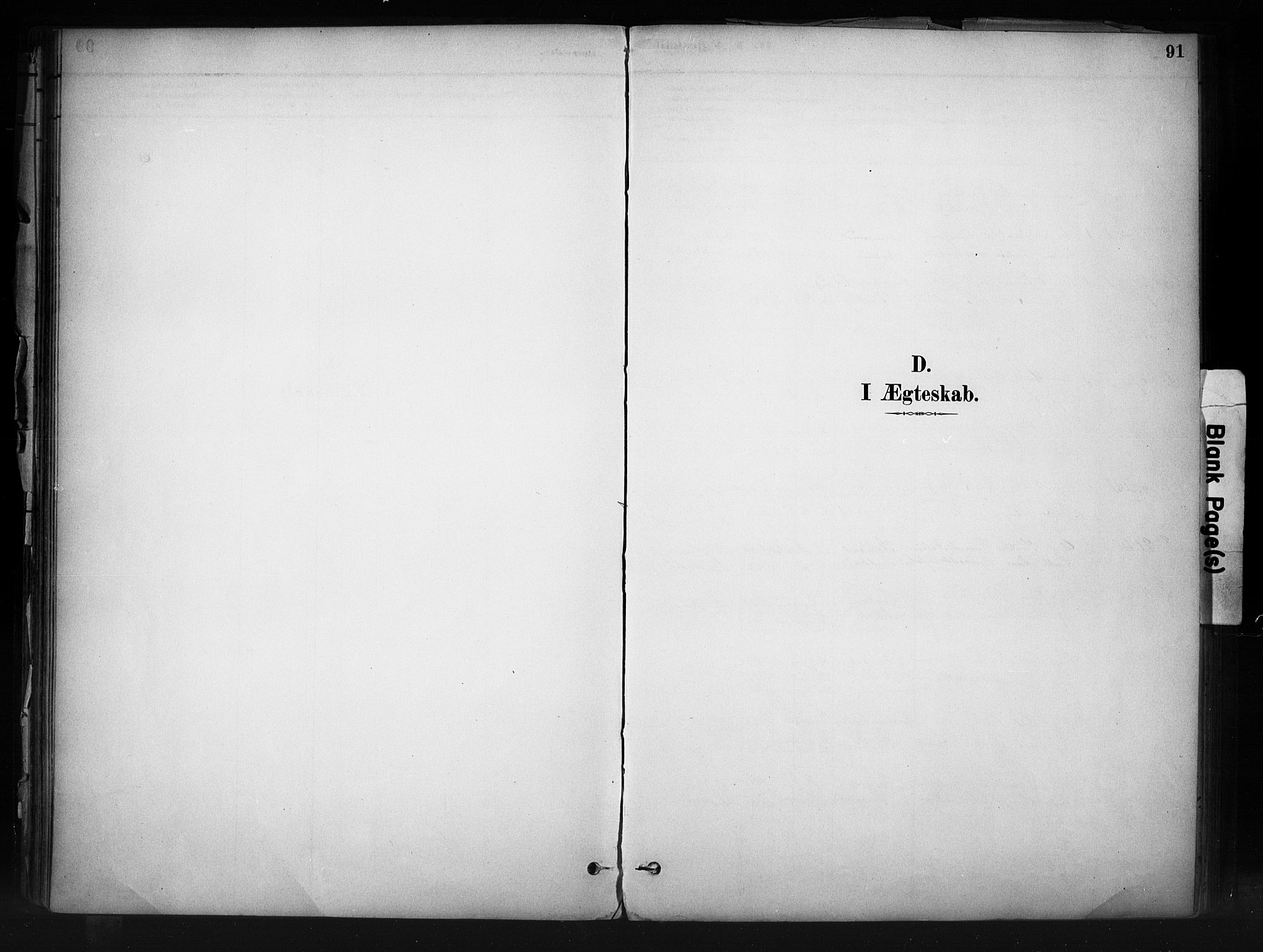 SAH, Nord-Aurdal prestekontor, Ministerialbok nr. 13, 1883-1895, s. 91