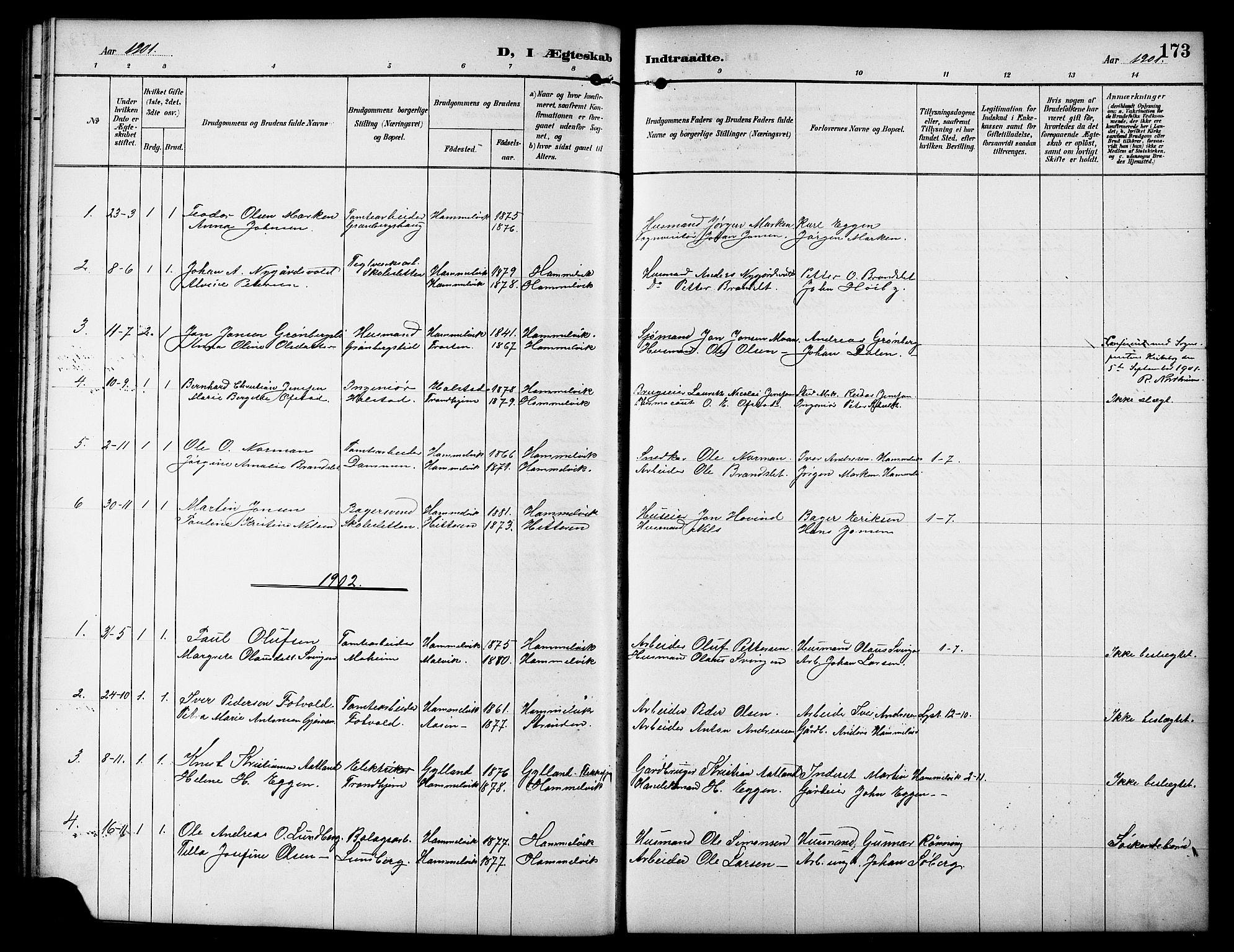SAT, Ministerialprotokoller, klokkerbøker og fødselsregistre - Sør-Trøndelag, 617/L0431: Klokkerbok nr. 617C01, 1889-1910, s. 173