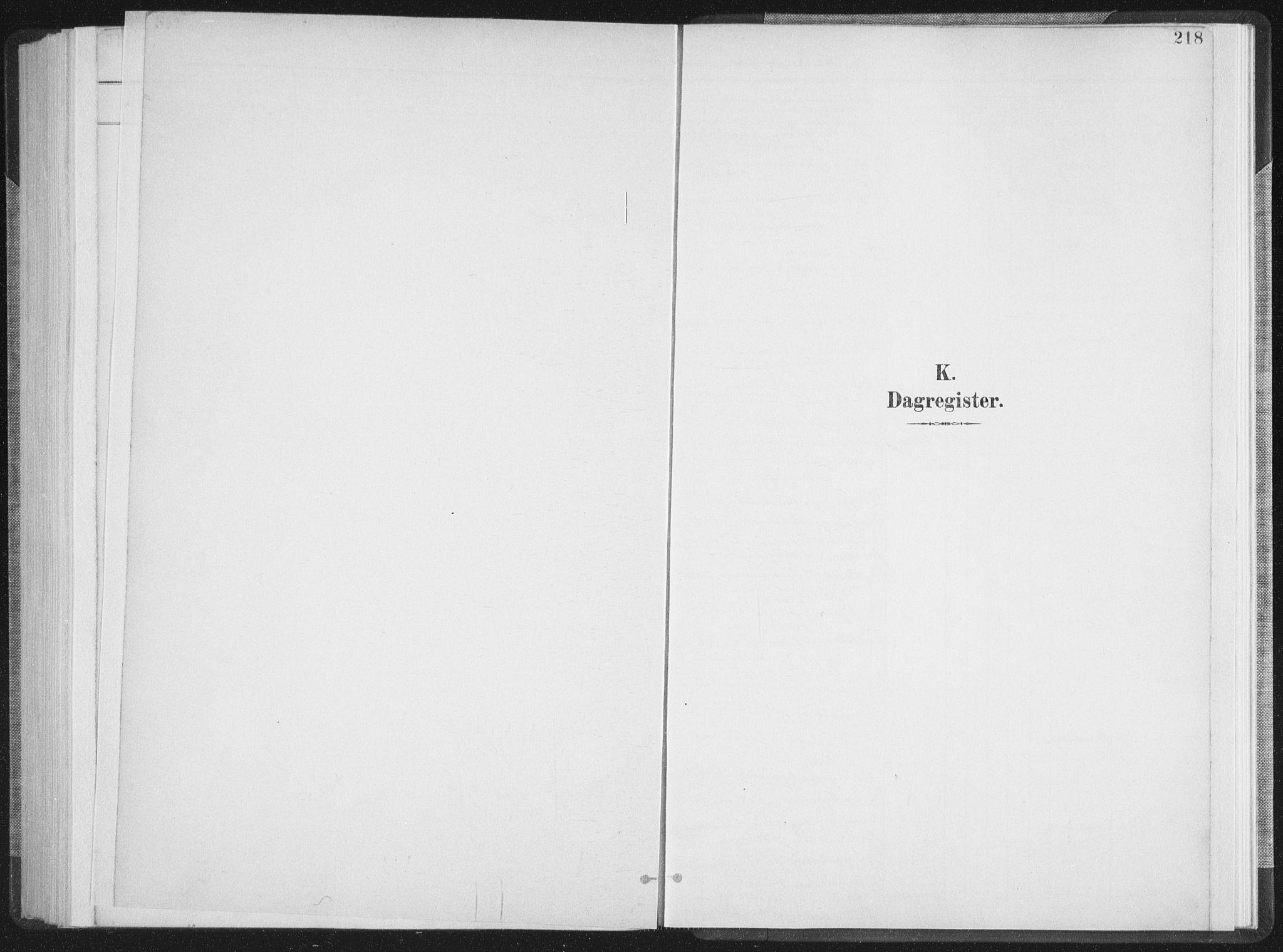 SAT, Ministerialprotokoller, klokkerbøker og fødselsregistre - Nordland, 897/L1400: Ministerialbok nr. 897A07, 1897-1908, s. 218