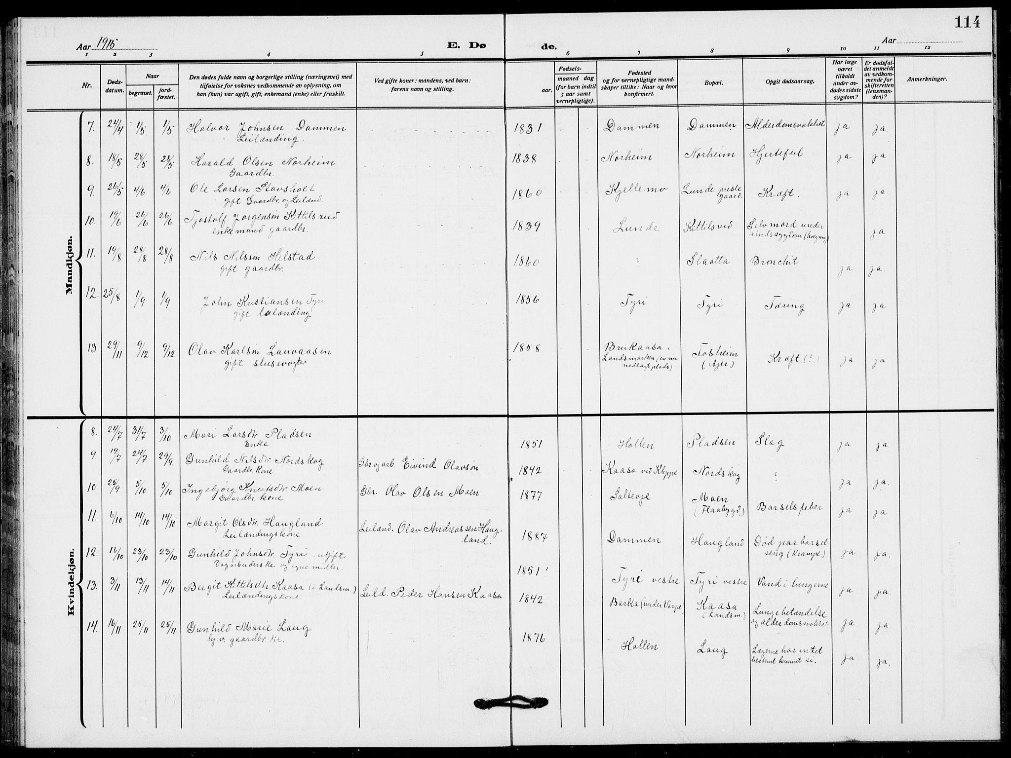 SAKO, Lunde kirkebøker, F/Fa/L0005: Ministerialbok nr. I 5, 1914-1922, s. 114