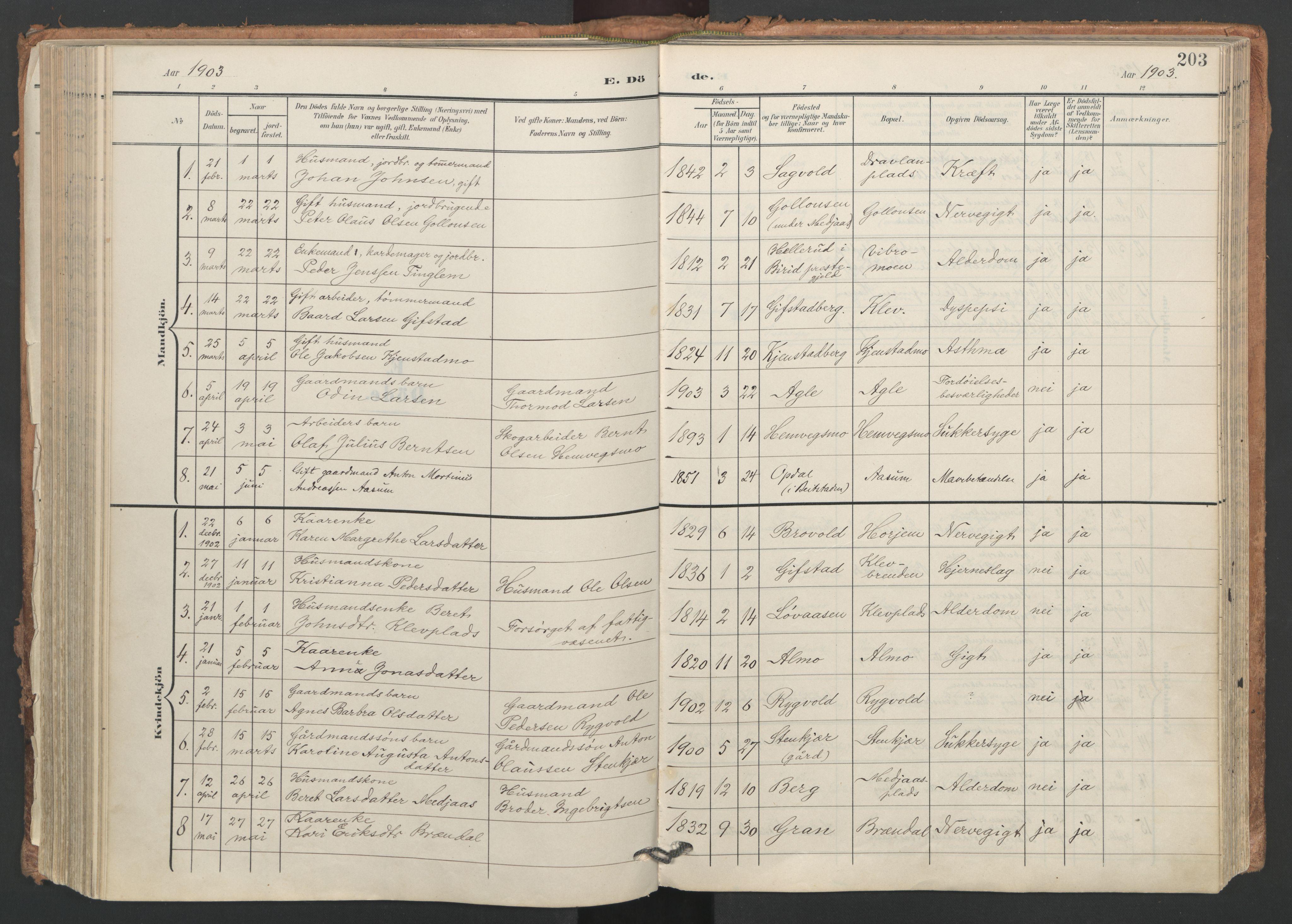 SAT, Ministerialprotokoller, klokkerbøker og fødselsregistre - Nord-Trøndelag, 749/L0477: Ministerialbok nr. 749A11, 1902-1927, s. 203