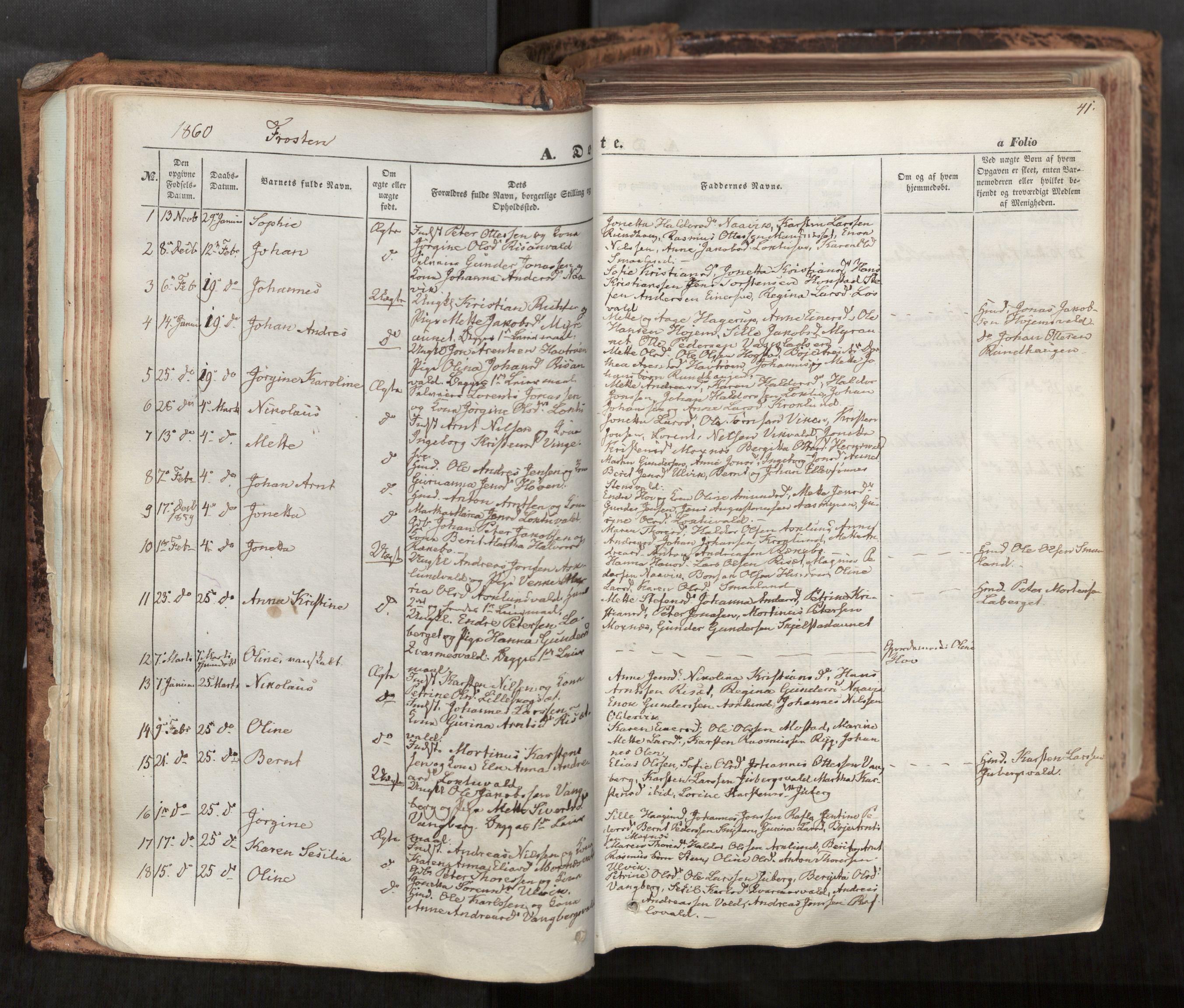 SAT, Ministerialprotokoller, klokkerbøker og fødselsregistre - Nord-Trøndelag, 713/L0116: Ministerialbok nr. 713A07, 1850-1877, s. 41