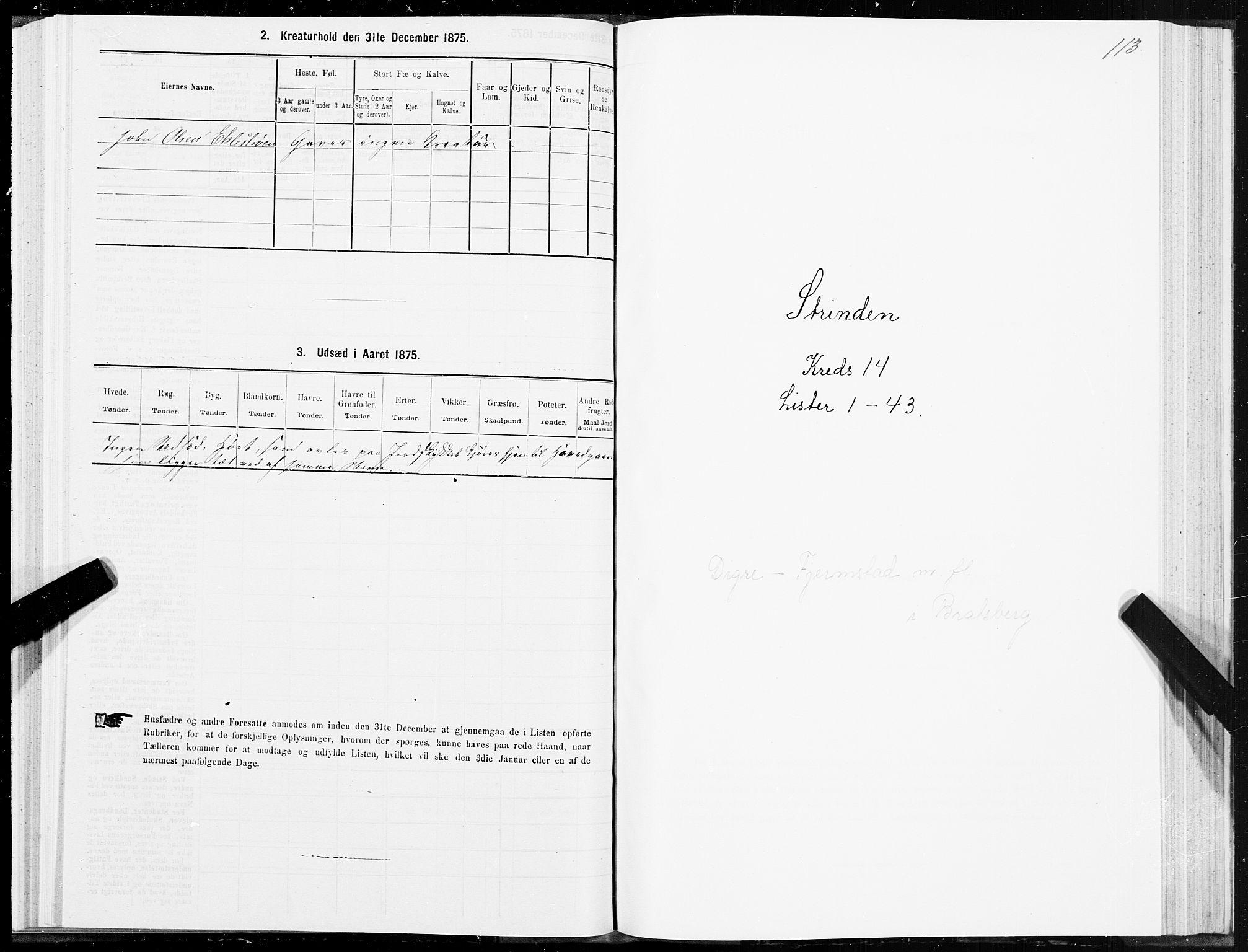 SAT, Folketelling 1875 for 1660P Strinda prestegjeld, 1875, s. 8113