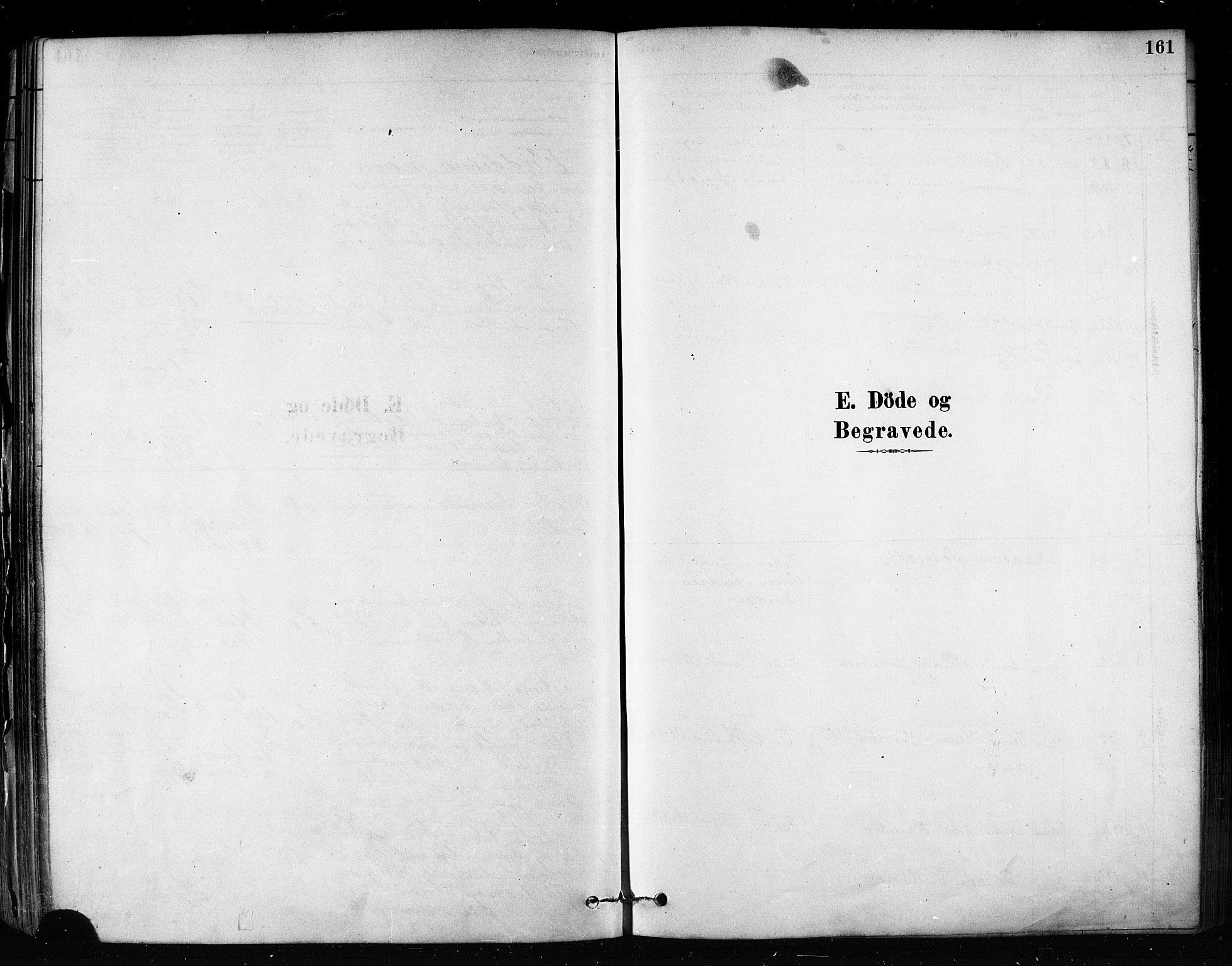 SATØ, Talvik sokneprestkontor, H/Ha/L0012kirke: Ministerialbok nr. 12, 1878-1886, s. 161