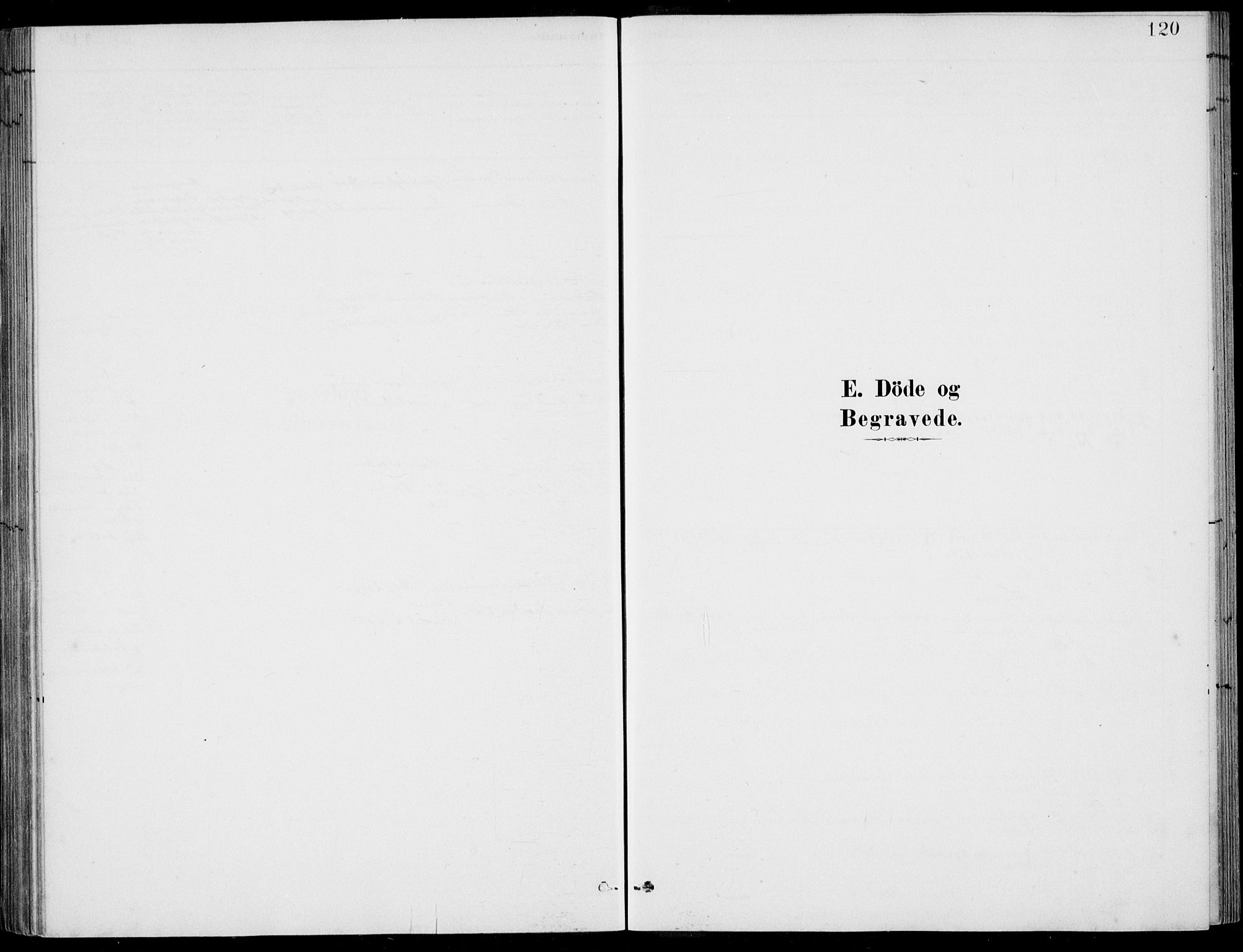 SAB, Ulvik Sokneprestembete, H/Haa: Ministerialbok nr. D  1, 1878-1903, s. 120