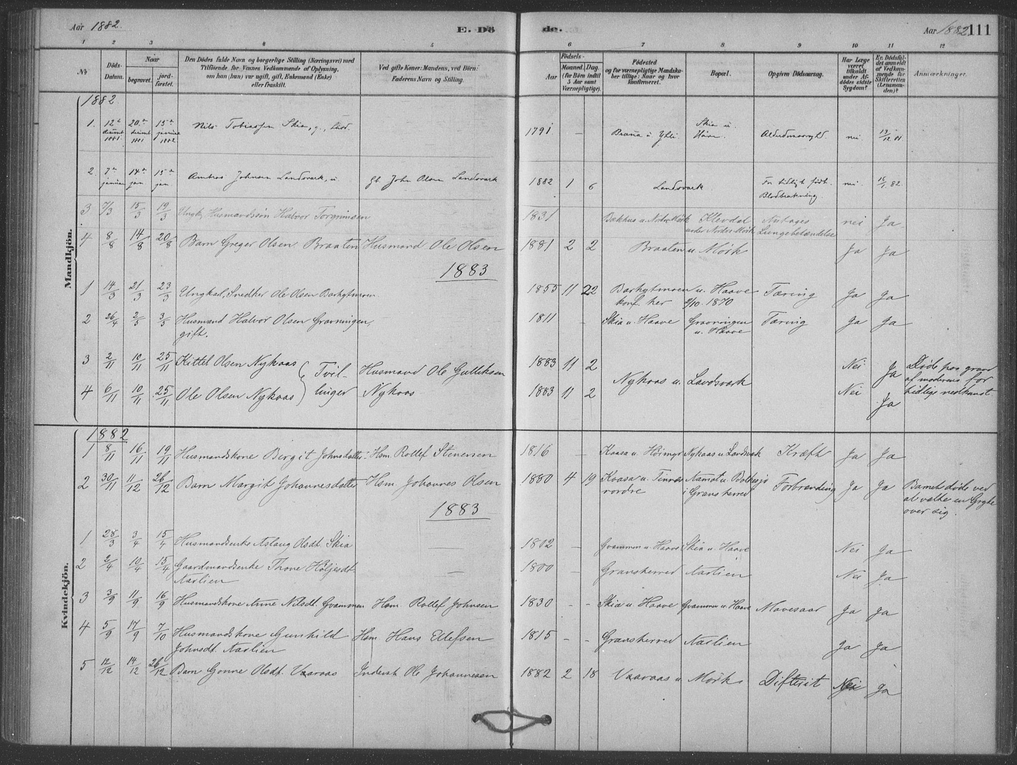 SAKO, Heddal kirkebøker, F/Fb/L0002: Ministerialbok nr. II 2, 1878-1913, s. 111