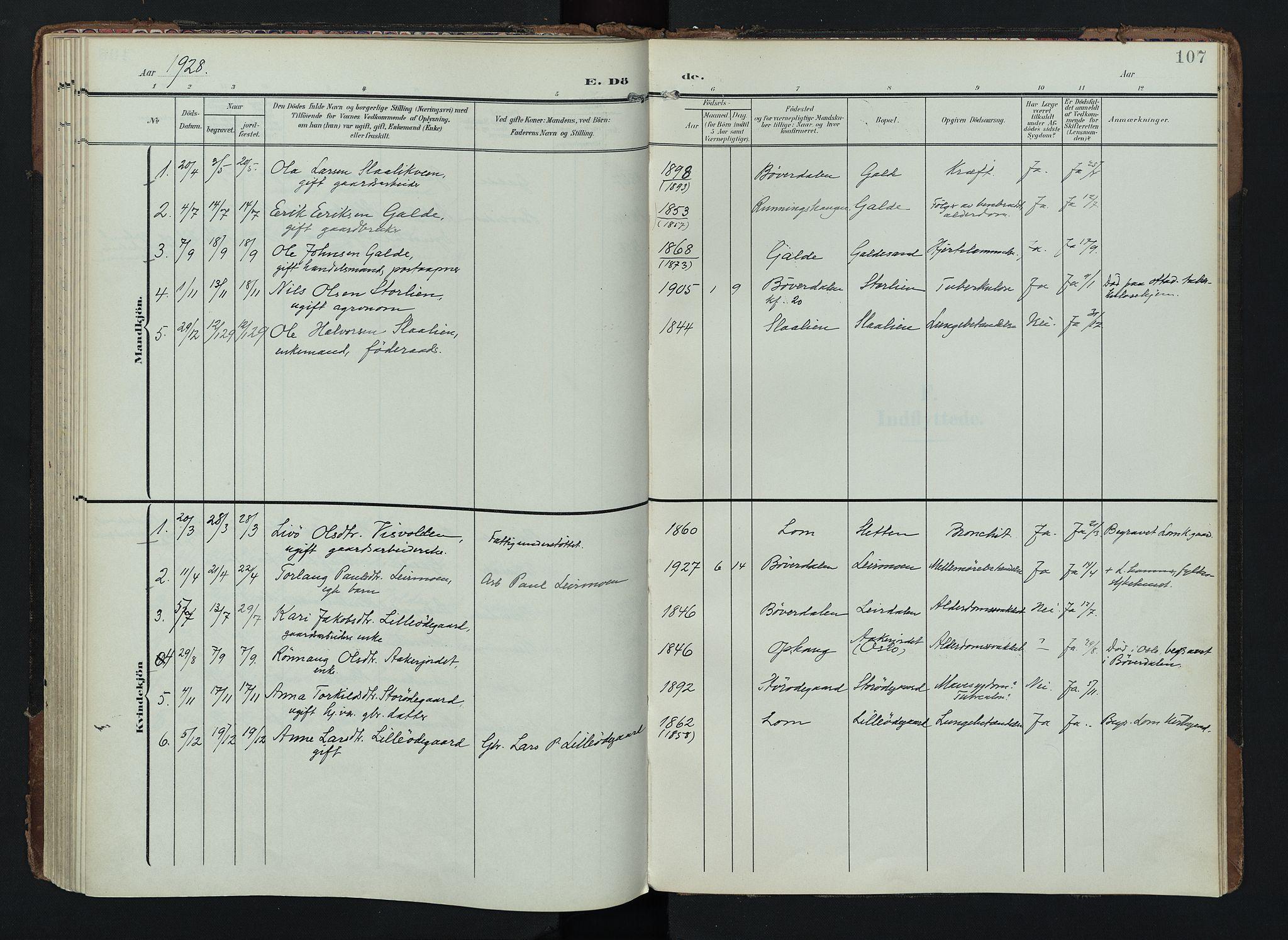 SAH, Lom prestekontor, K/L0012: Ministerialbok nr. 12, 1904-1928, s. 107
