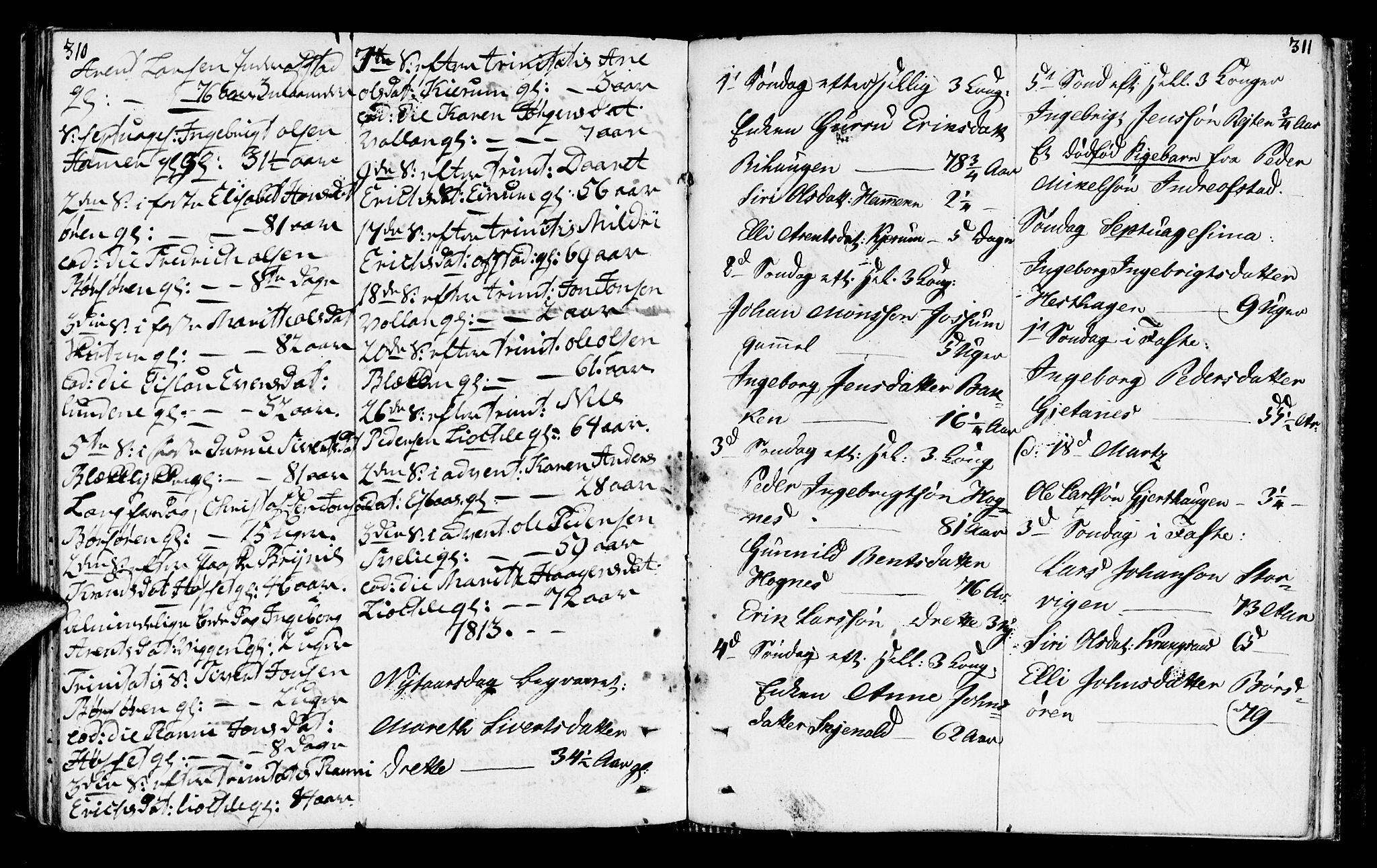 SAT, Ministerialprotokoller, klokkerbøker og fødselsregistre - Sør-Trøndelag, 665/L0769: Ministerialbok nr. 665A04, 1803-1816, s. 310-311