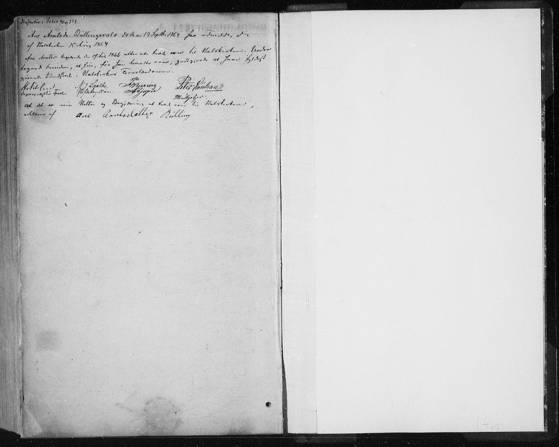 SAT, Ministerialprotokoller, klokkerbøker og fødselsregistre - Nord-Trøndelag, 735/L0345: Ministerialbok nr. 735A08 /1, 1863-1872