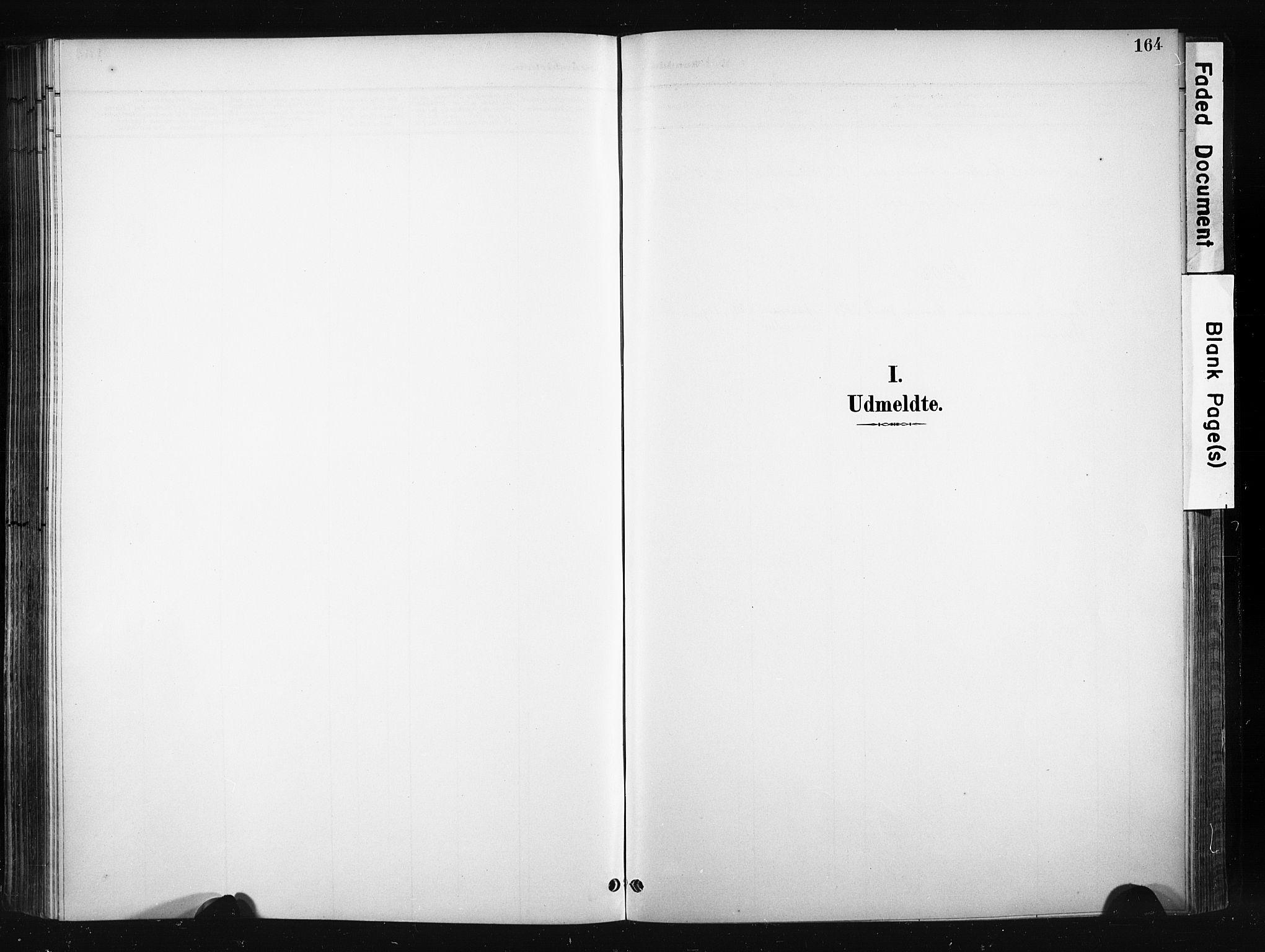 SAH, Søndre Land prestekontor, K/L0004: Ministerialbok nr. 4, 1895-1904, s. 164