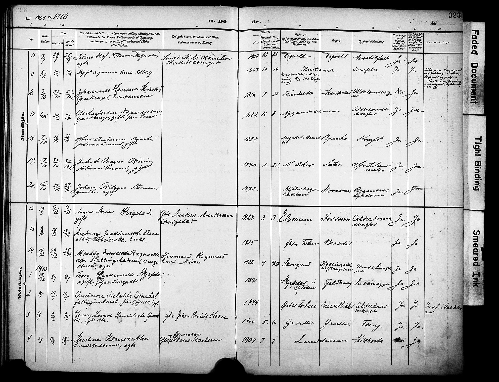 SAH, Vestre Toten prestekontor, Ministerialbok nr. 13, 1895-1911, s. 323