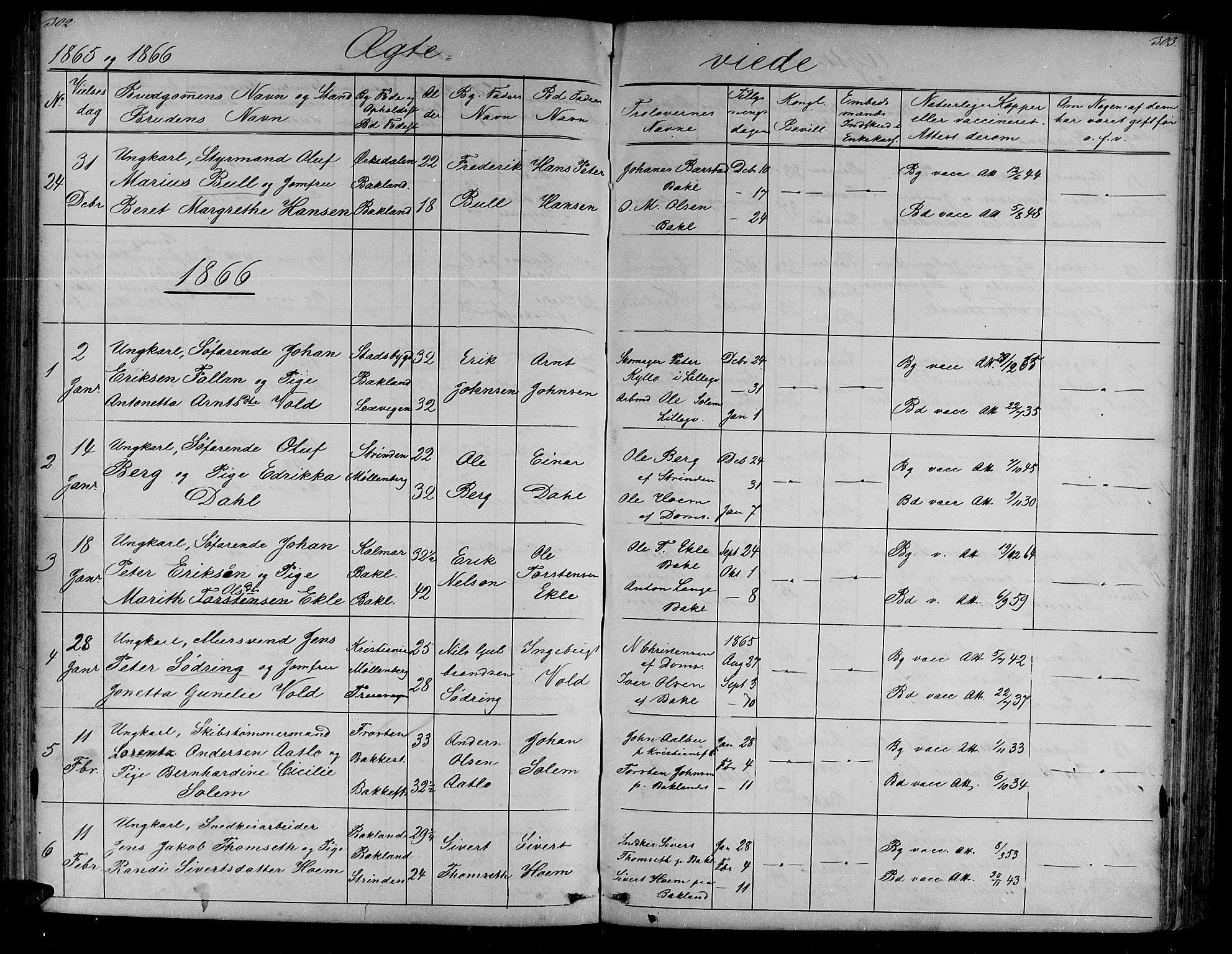 SAT, Ministerialprotokoller, klokkerbøker og fødselsregistre - Sør-Trøndelag, 604/L0219: Klokkerbok nr. 604C02, 1851-1869, s. 302-303