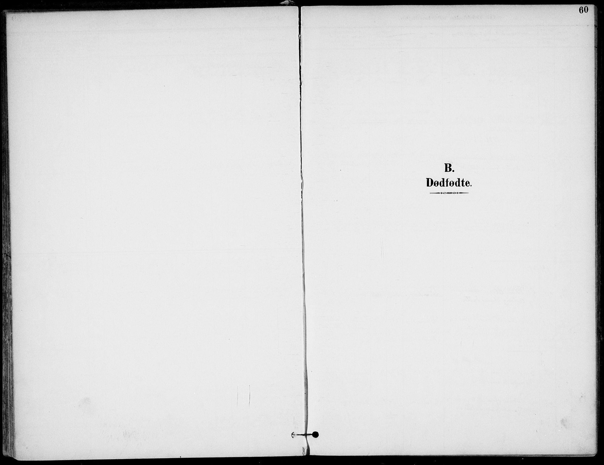 SAKO, Lunde kirkebøker, F/Fa/L0003: Ministerialbok nr. I 3, 1893-1902, s. 60