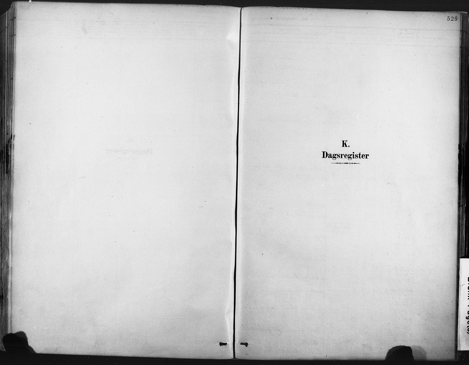 SAKO, Porsgrunn kirkebøker , F/Fa/L0008: Ministerialbok nr. 8, 1878-1895, s. 529