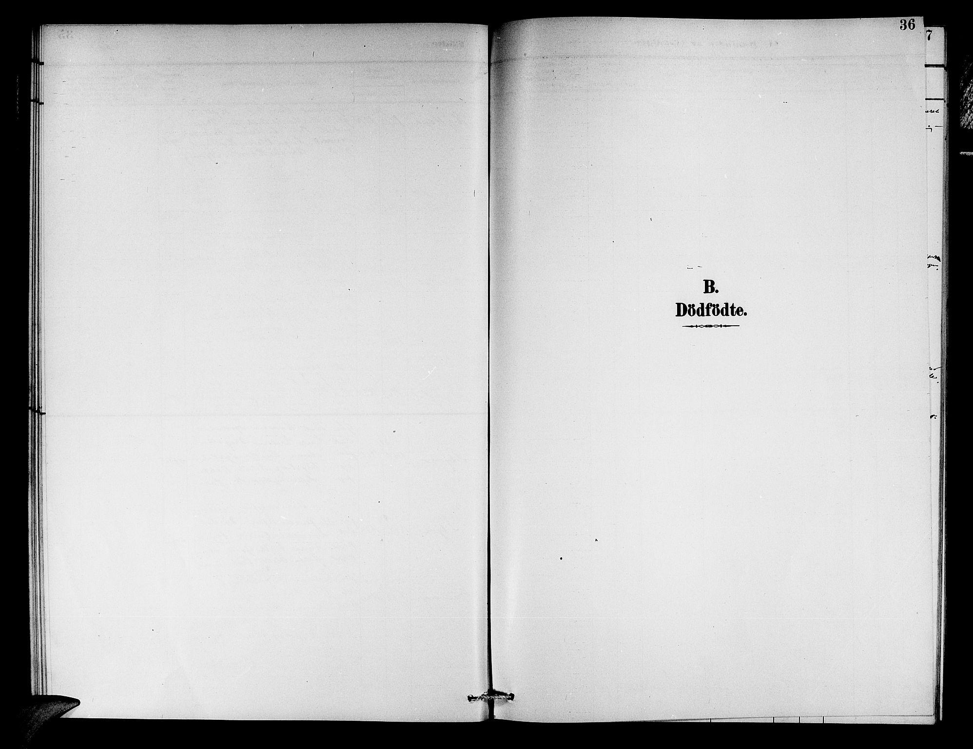 SAB, Aurland Sokneprestembete*, Klokkerbok nr. C 2, 1883-1900, s. 36