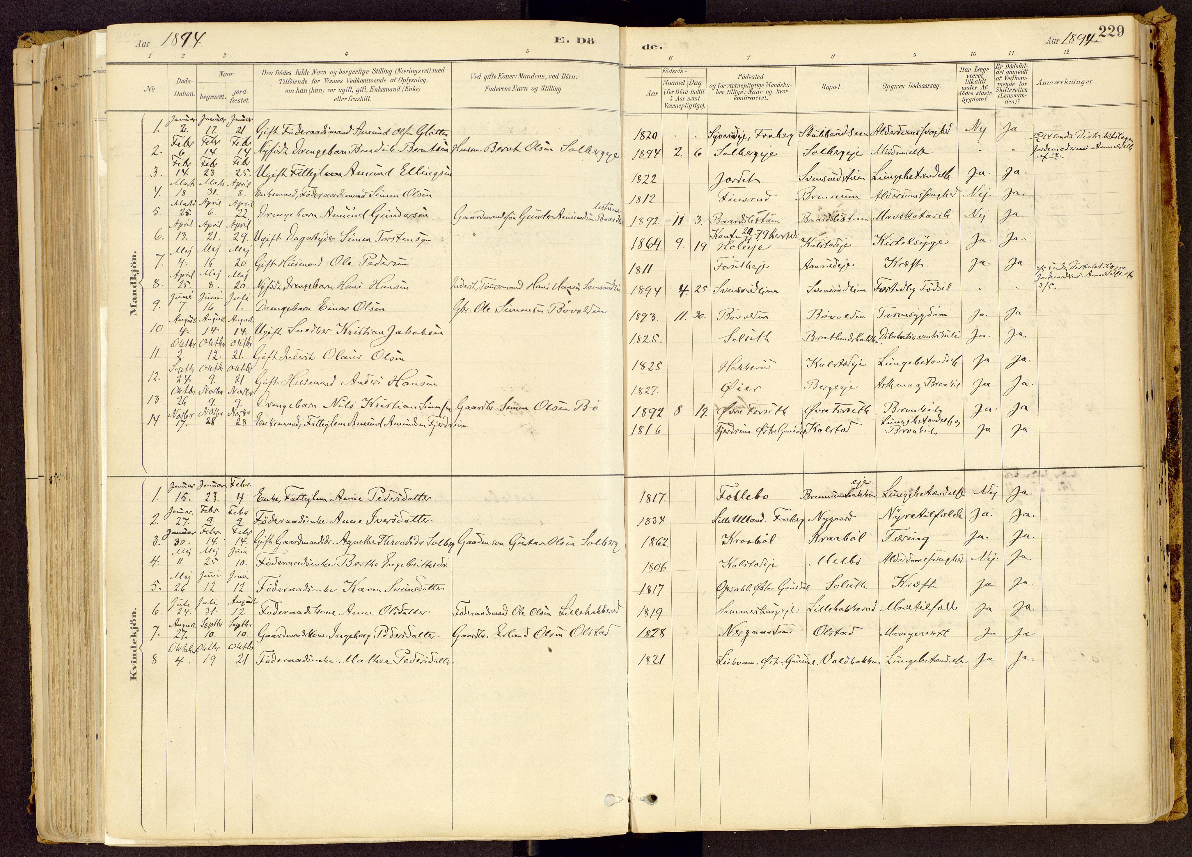 SAH, Vestre Gausdal prestekontor, Ministerialbok nr. 1, 1887-1914, s. 229