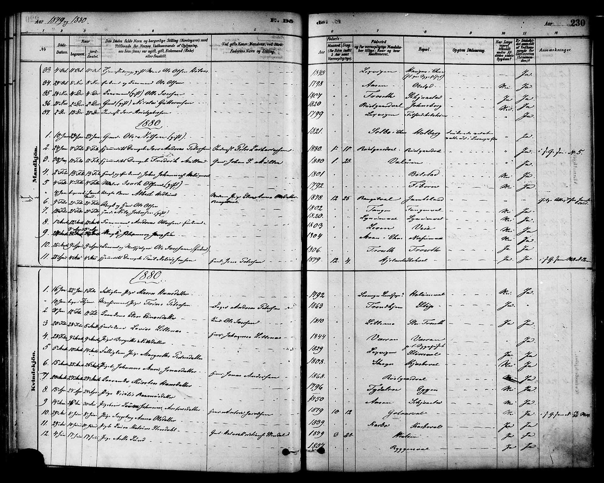 SAT, Ministerialprotokoller, klokkerbøker og fødselsregistre - Nord-Trøndelag, 717/L0159: Ministerialbok nr. 717A09, 1878-1898, s. 230