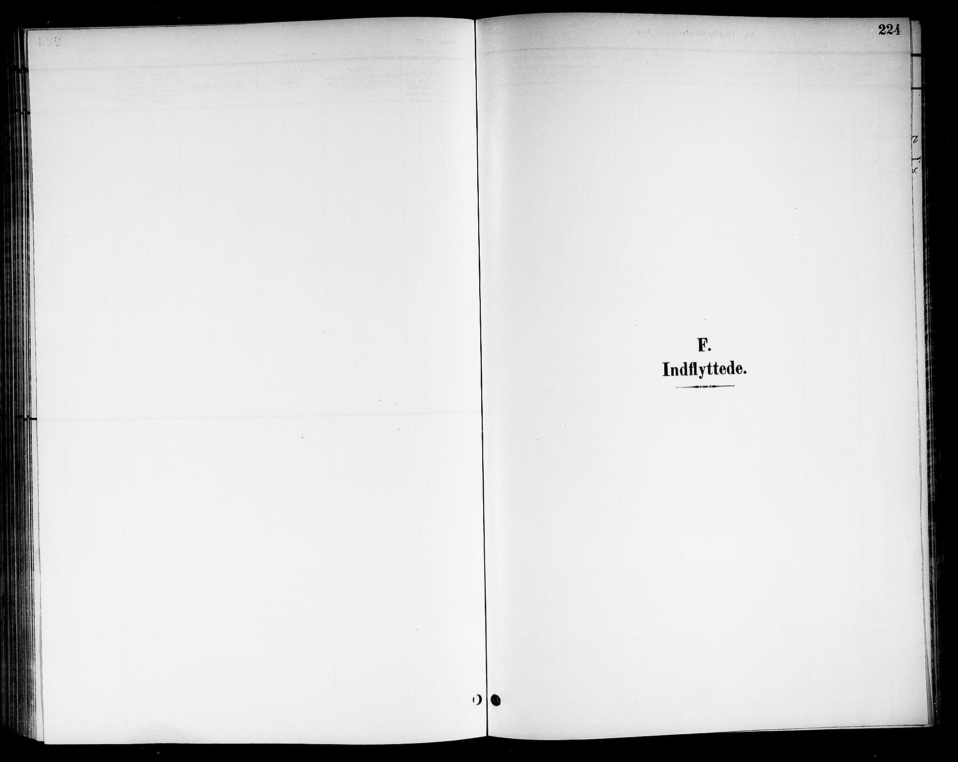 SAKO, Nore kirkebøker, G/Gb/L0003: Klokkerbok nr. II 3, 1894-1923, s. 224