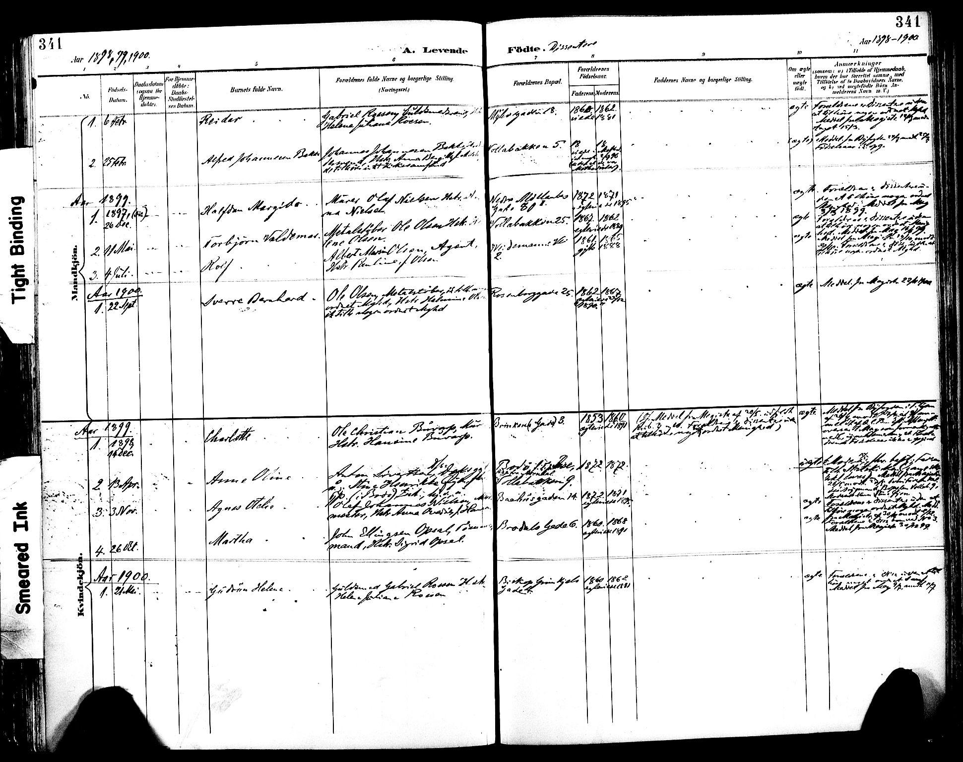 SAT, Ministerialprotokoller, klokkerbøker og fødselsregistre - Sør-Trøndelag, 604/L0197: Ministerialbok nr. 604A18, 1893-1900, s. 341