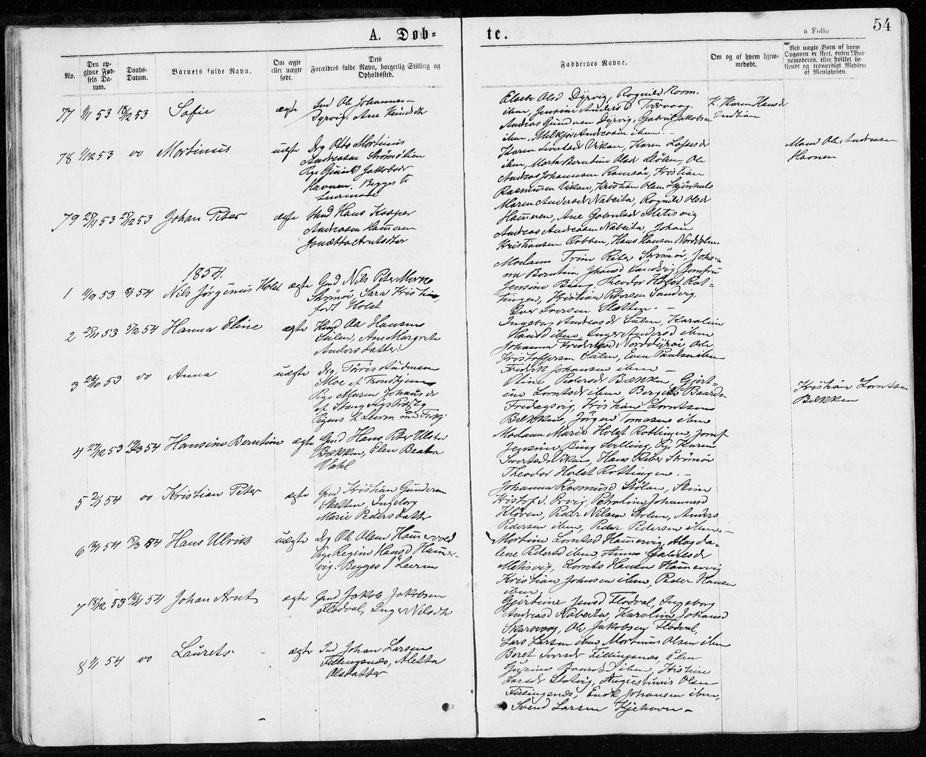 SAT, Ministerialprotokoller, klokkerbøker og fødselsregistre - Sør-Trøndelag, 640/L0576: Ministerialbok nr. 640A01, 1846-1876, s. 54